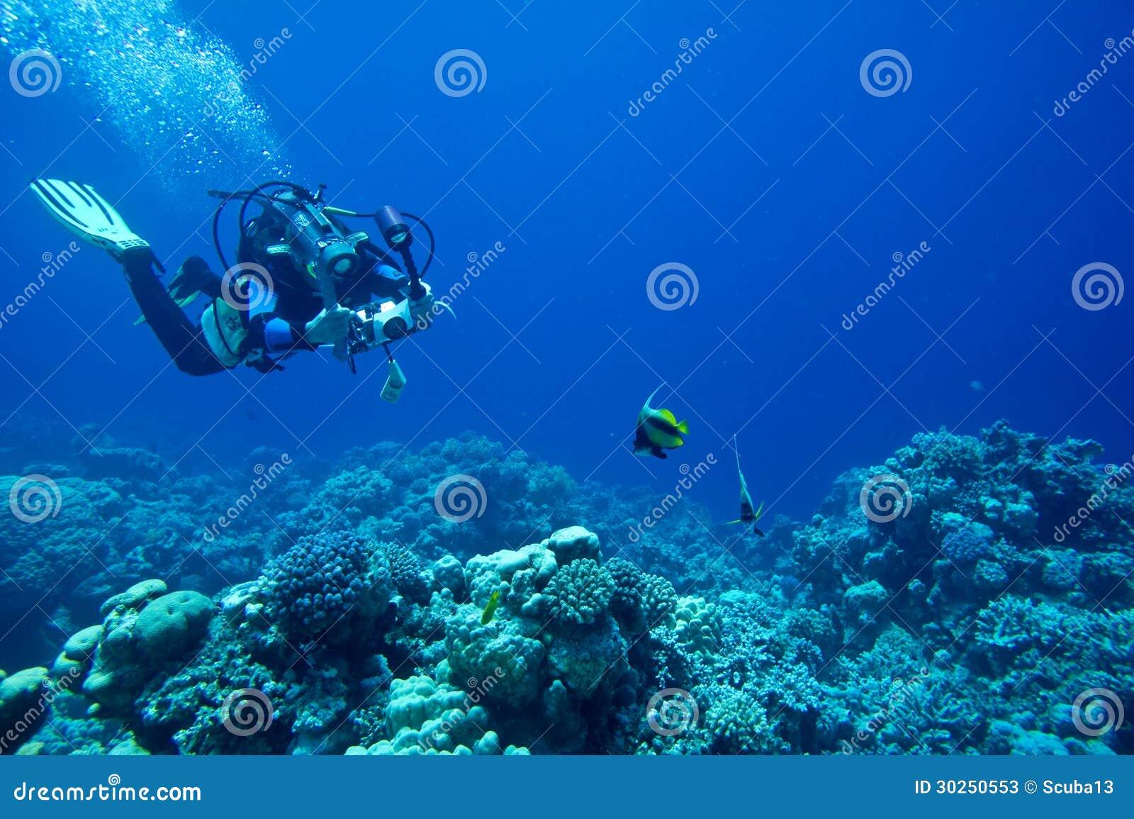 Le plongeur autonome prend la photo sous-marine
