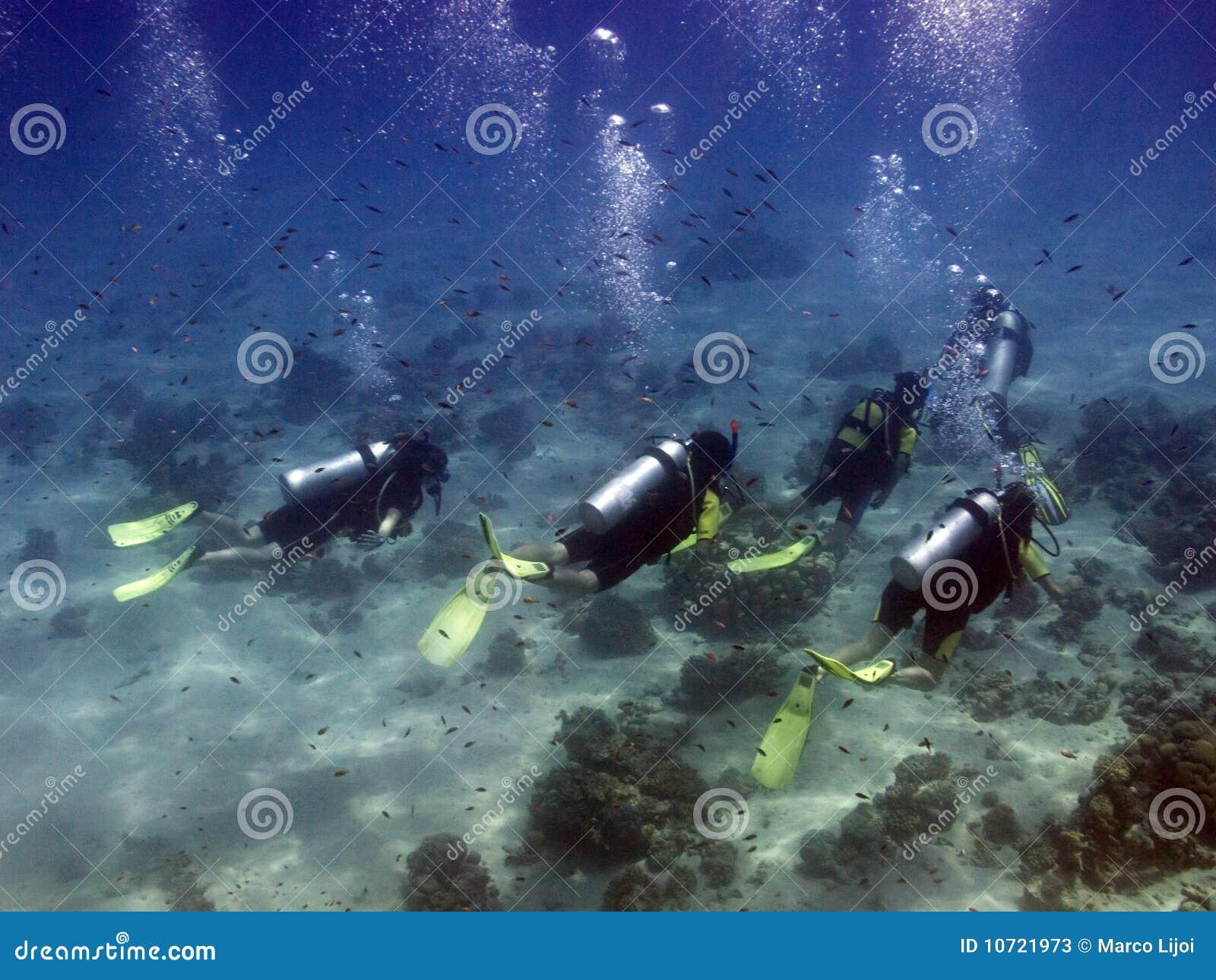 Plongeurs avec le guide