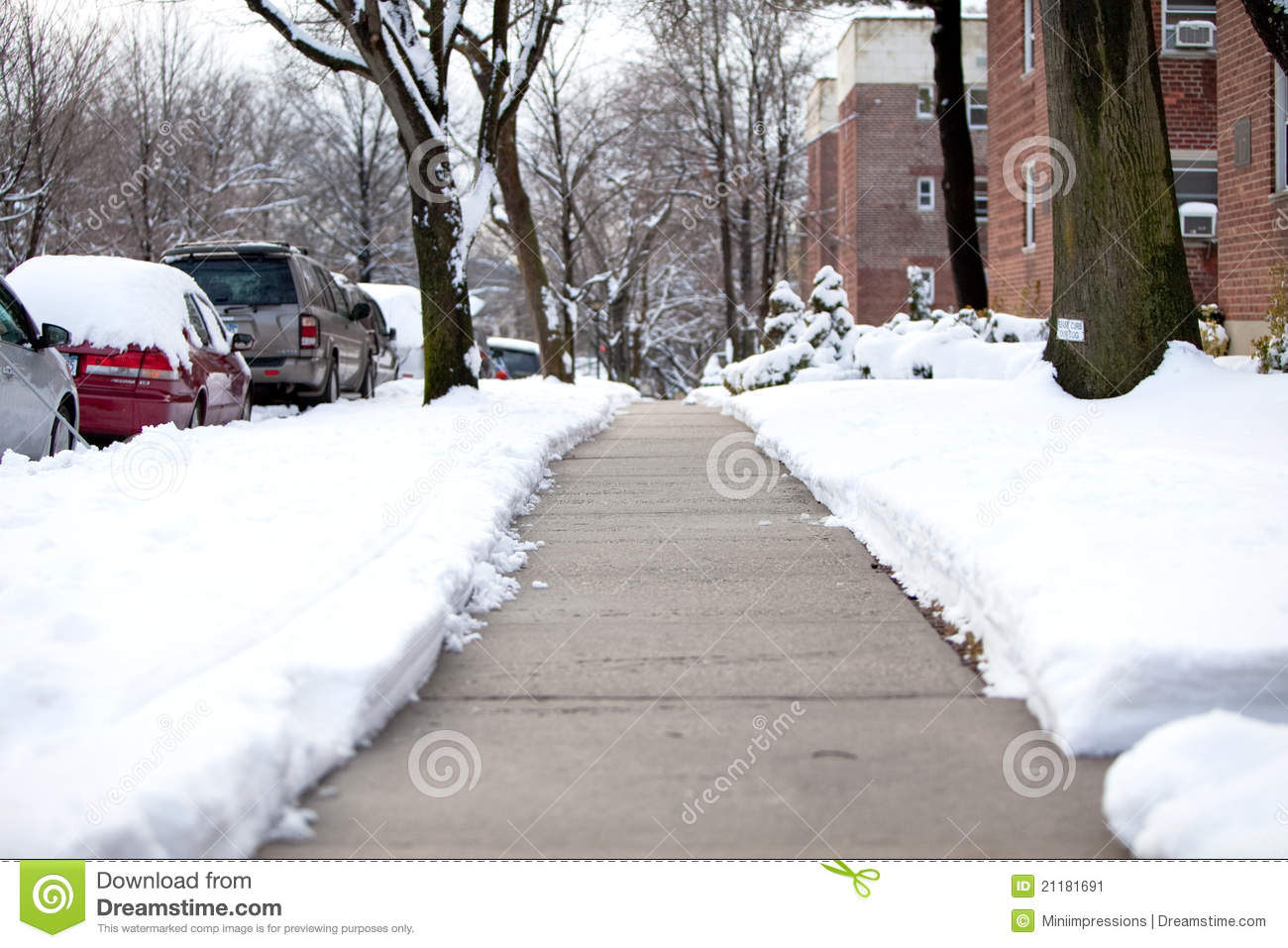 Plowed walkway after a snowstorm