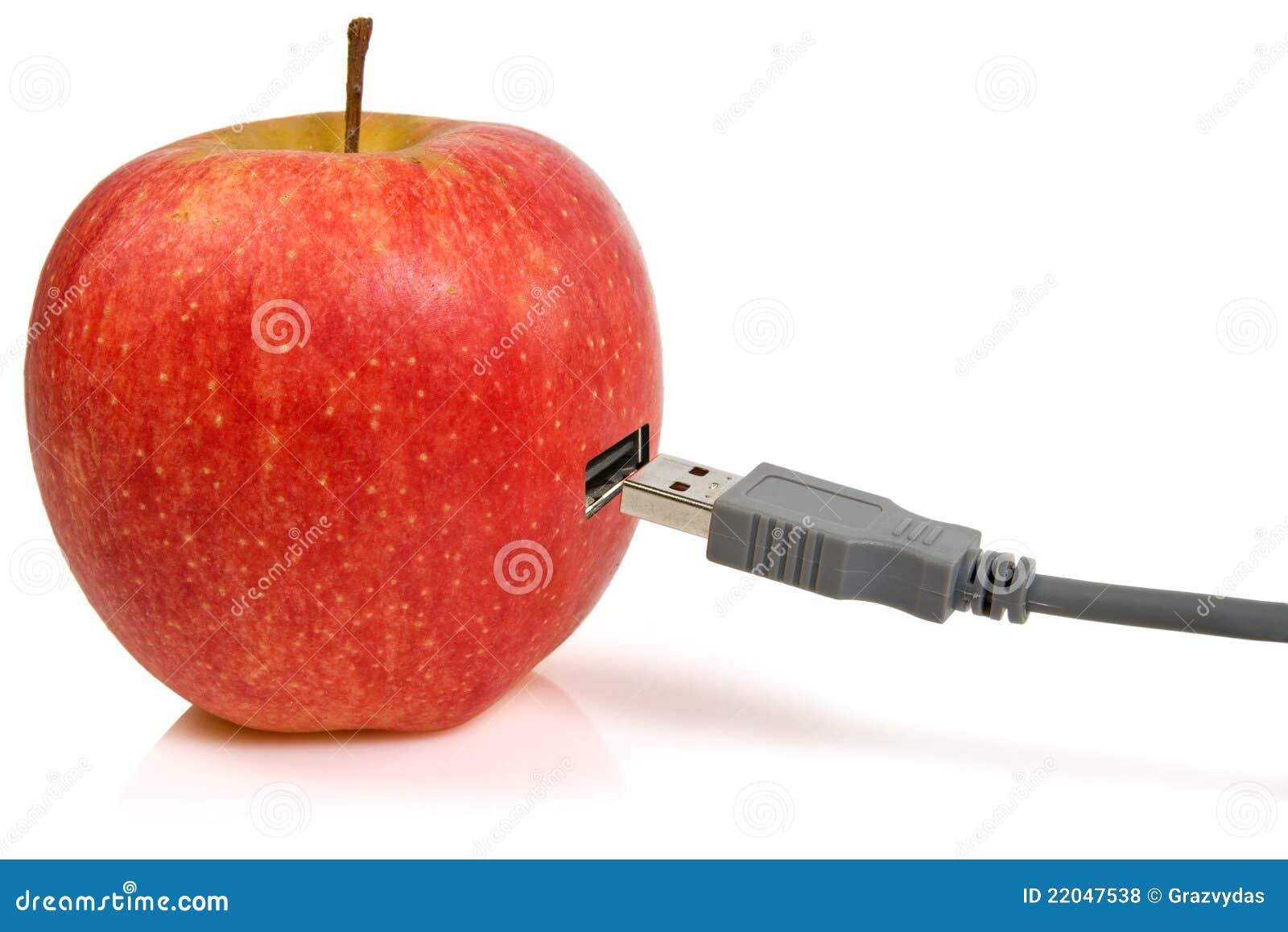 Plugue de Apple e de USB