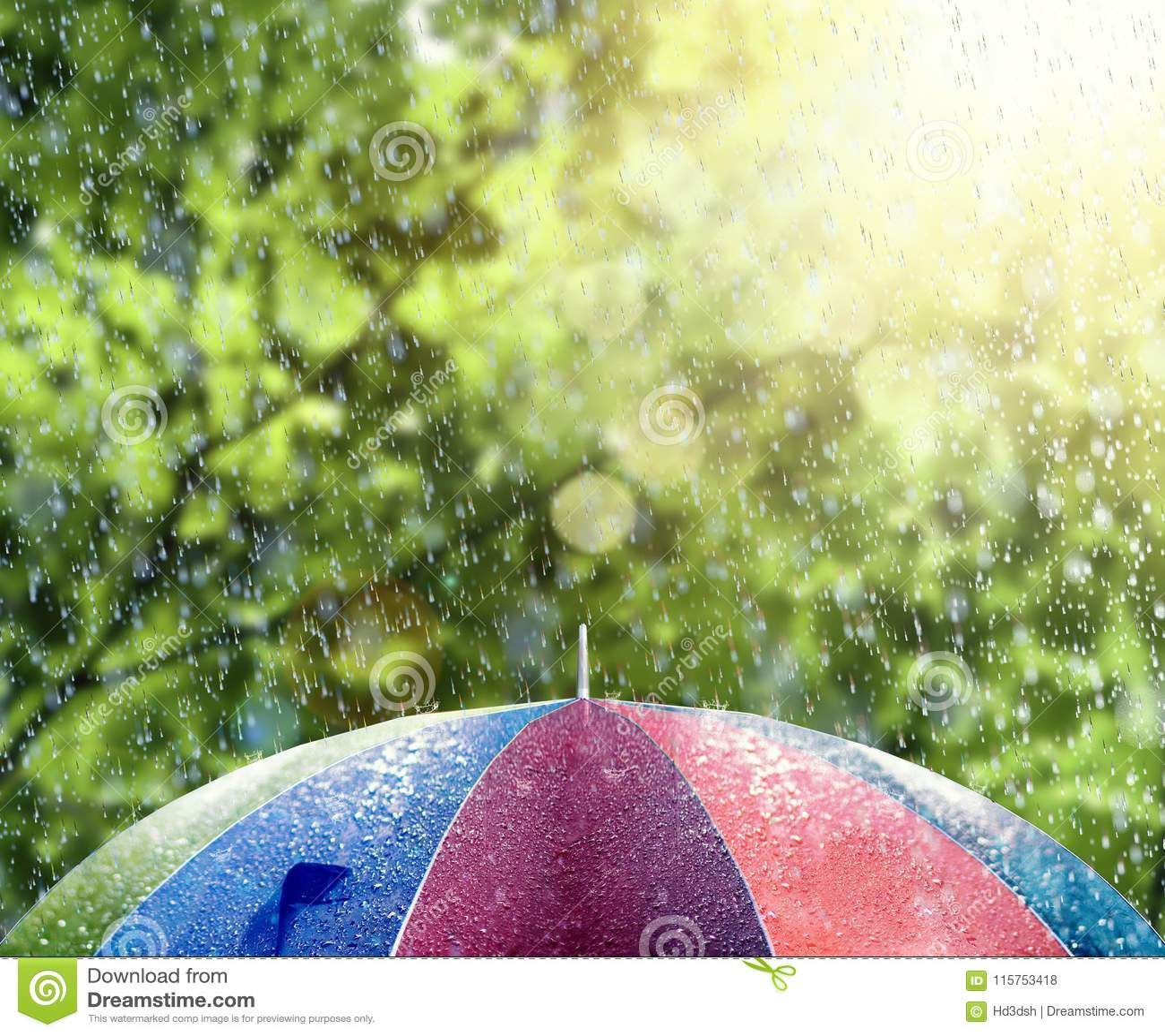 Pluie d été sur le parapluie coloré