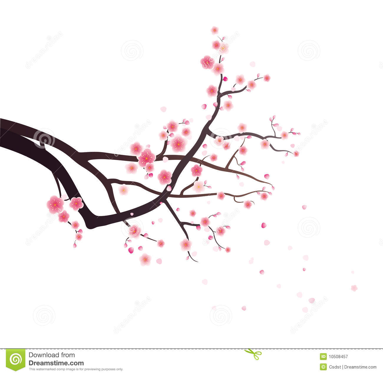 An illustration of a tree branch with plum blossoms and blowing petals ...