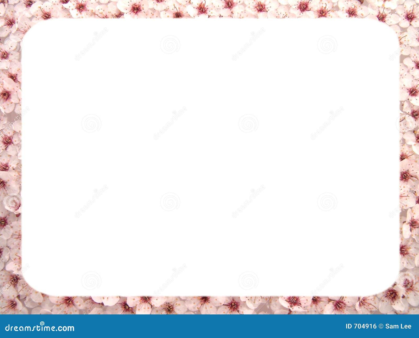 plum flowers frame i royalty free stock image