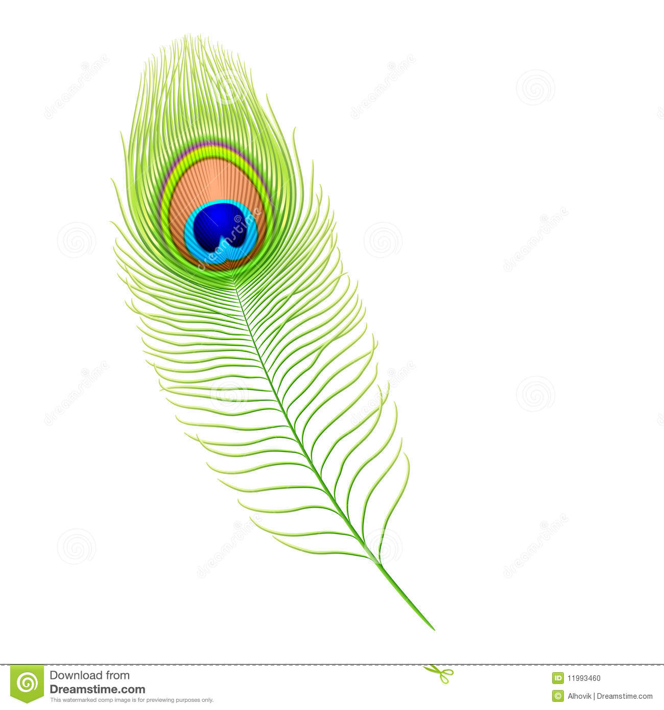 peacock feather krishna png