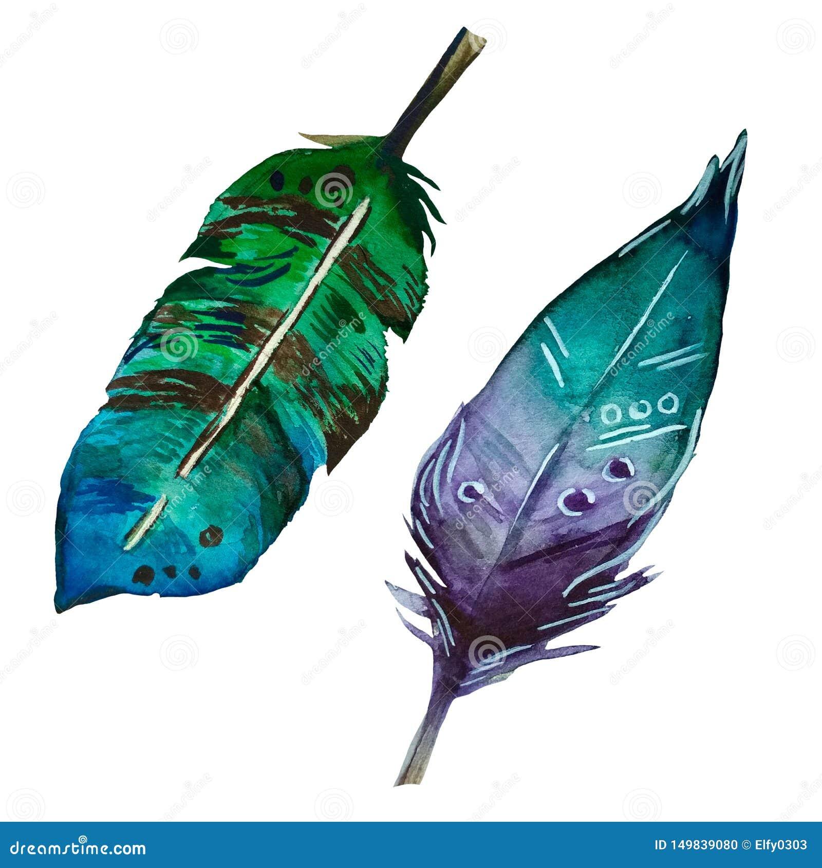 2 plumas coloridas de la acuarela en estilo del boho