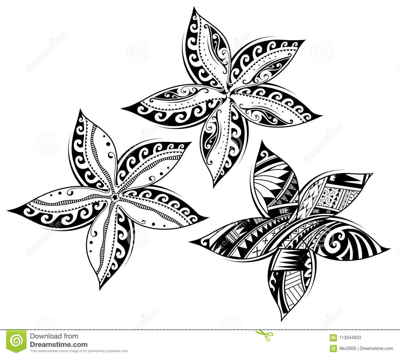 Plumeria Flower As Tribal Style Tattoo Stock Vector Illustration