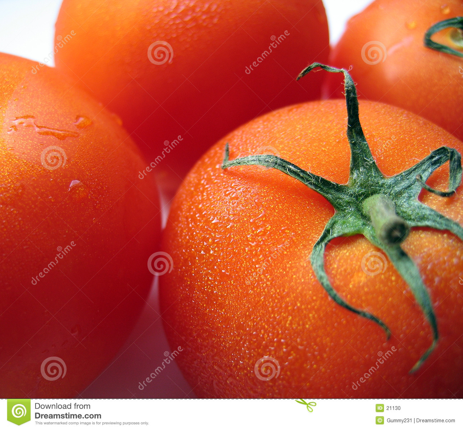 Plump Ripe Tomatoes