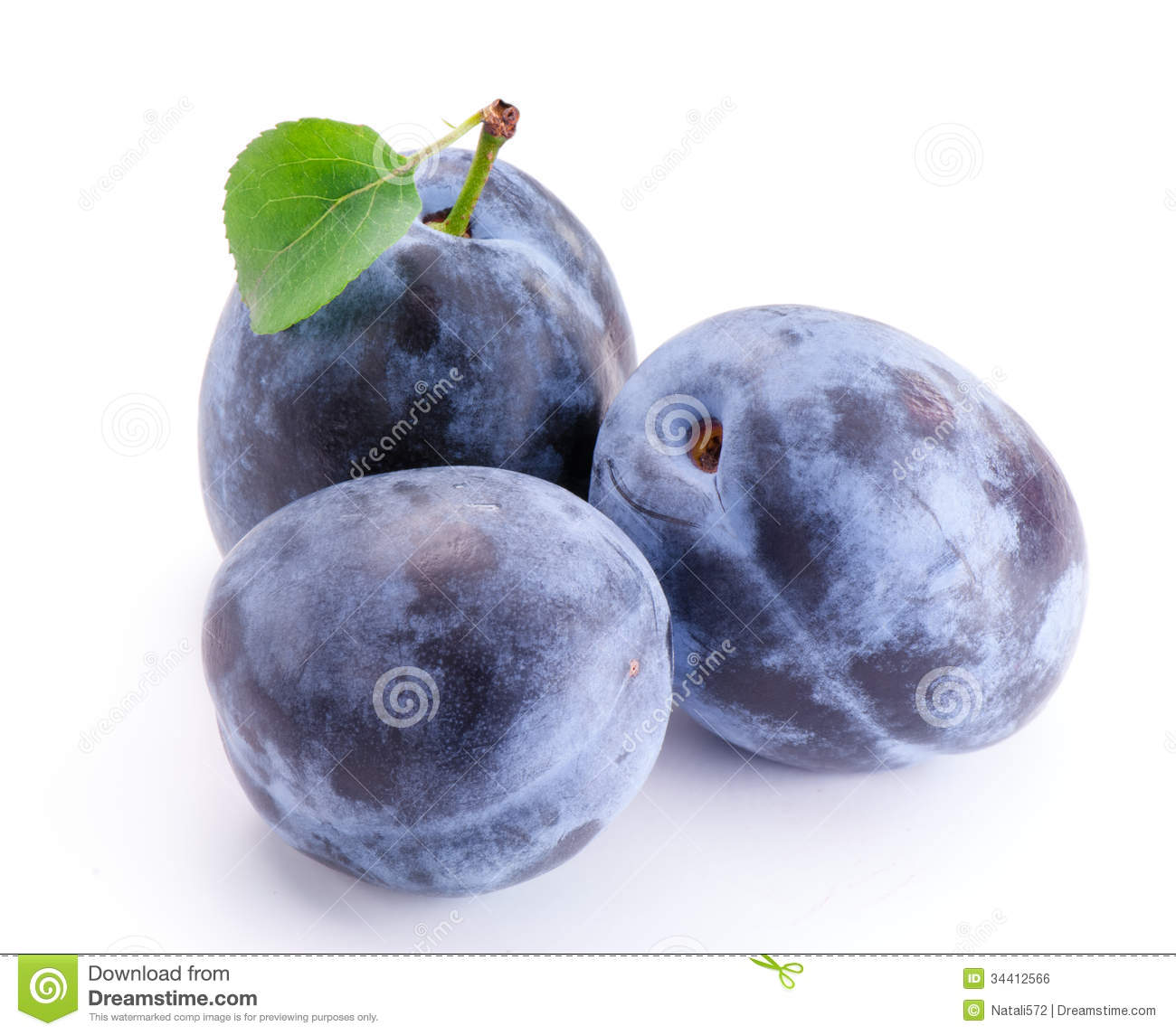 14 Best Images About Plum And Gray Decor On Pinterest: Plums With Leaf Royalty Free Stock Image