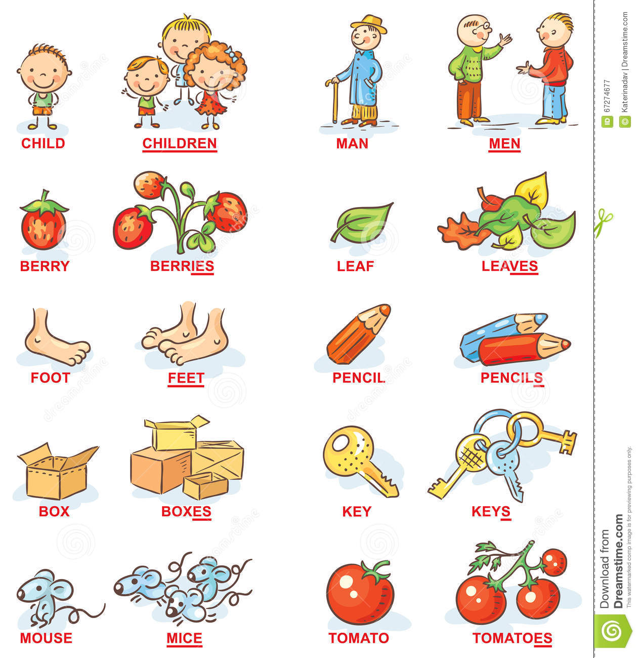 Plural Of Nouns In Colorful Cartoon Pictures Can Be Used