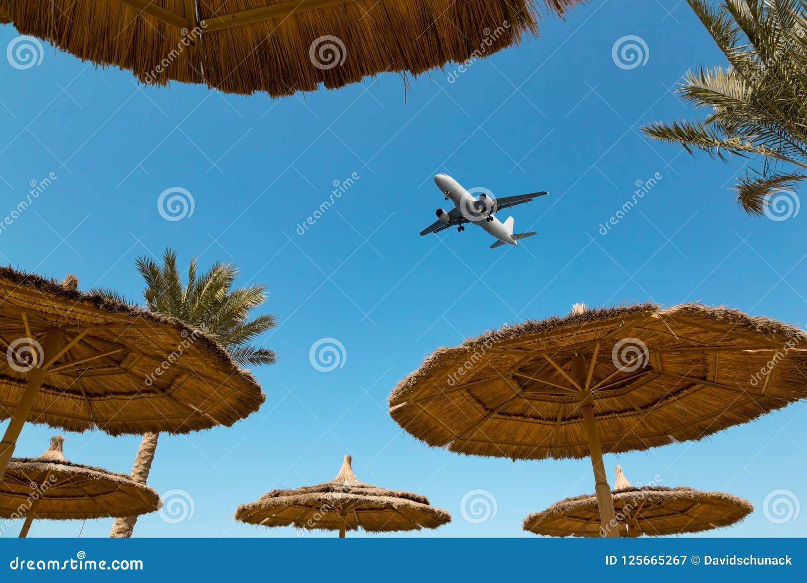 Plusieurs parapluies de plage de paille et un avion