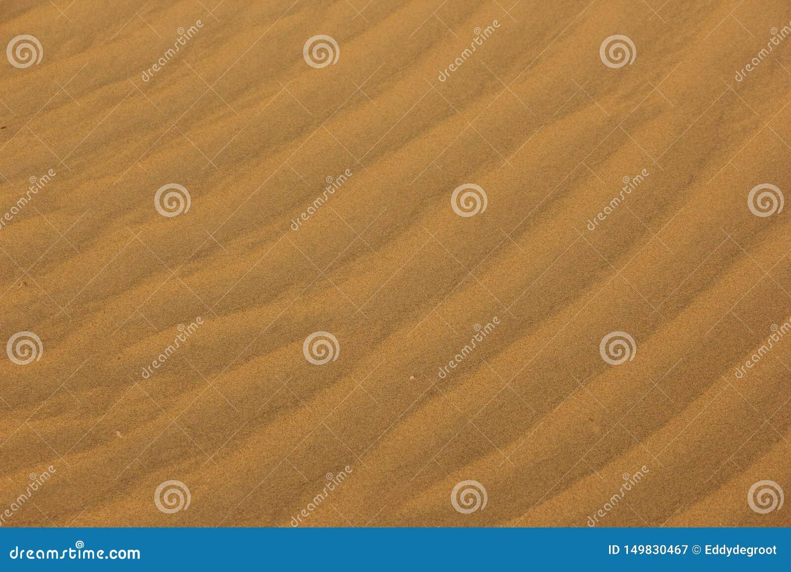 Pluskocz?cy piasek w pustyni