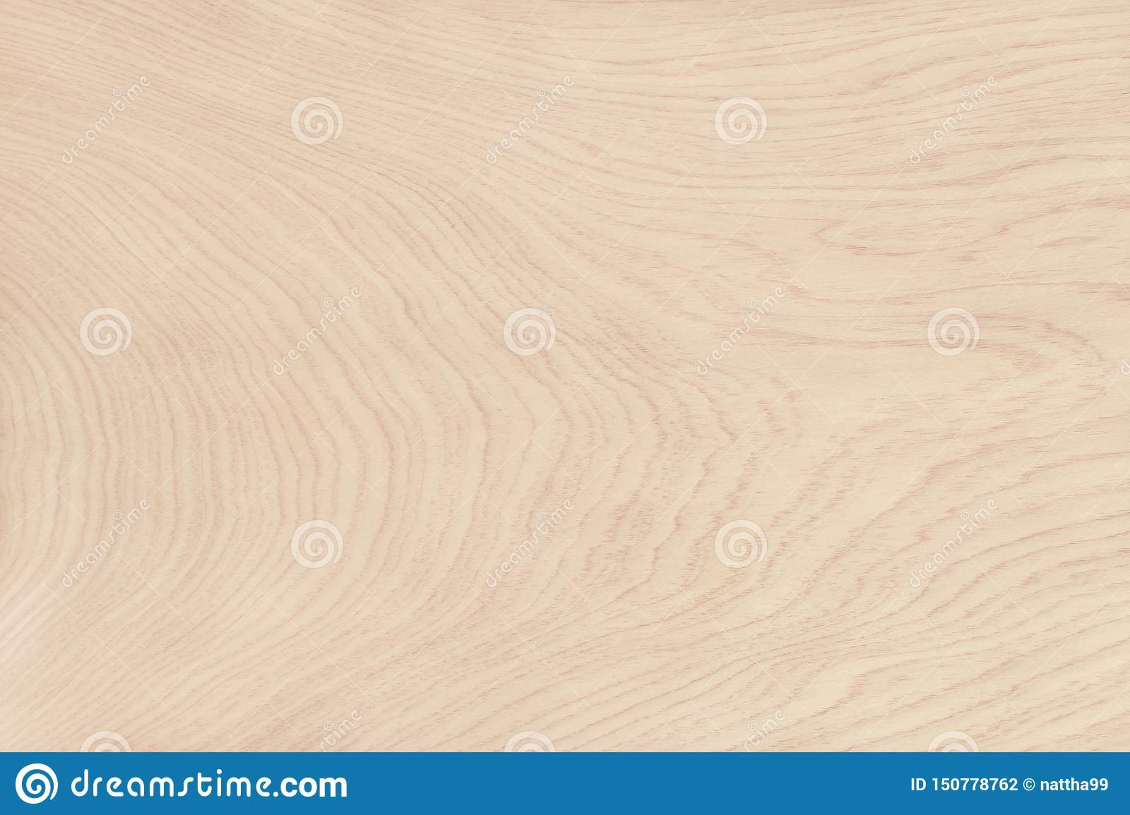 Plywood surface in natural pattern with high resolution. Wooden grained texture background