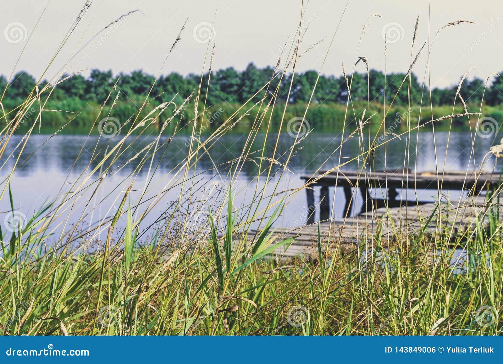 Połów platforma na jeziorze b??kitny mola denny s?o?ce drewniany