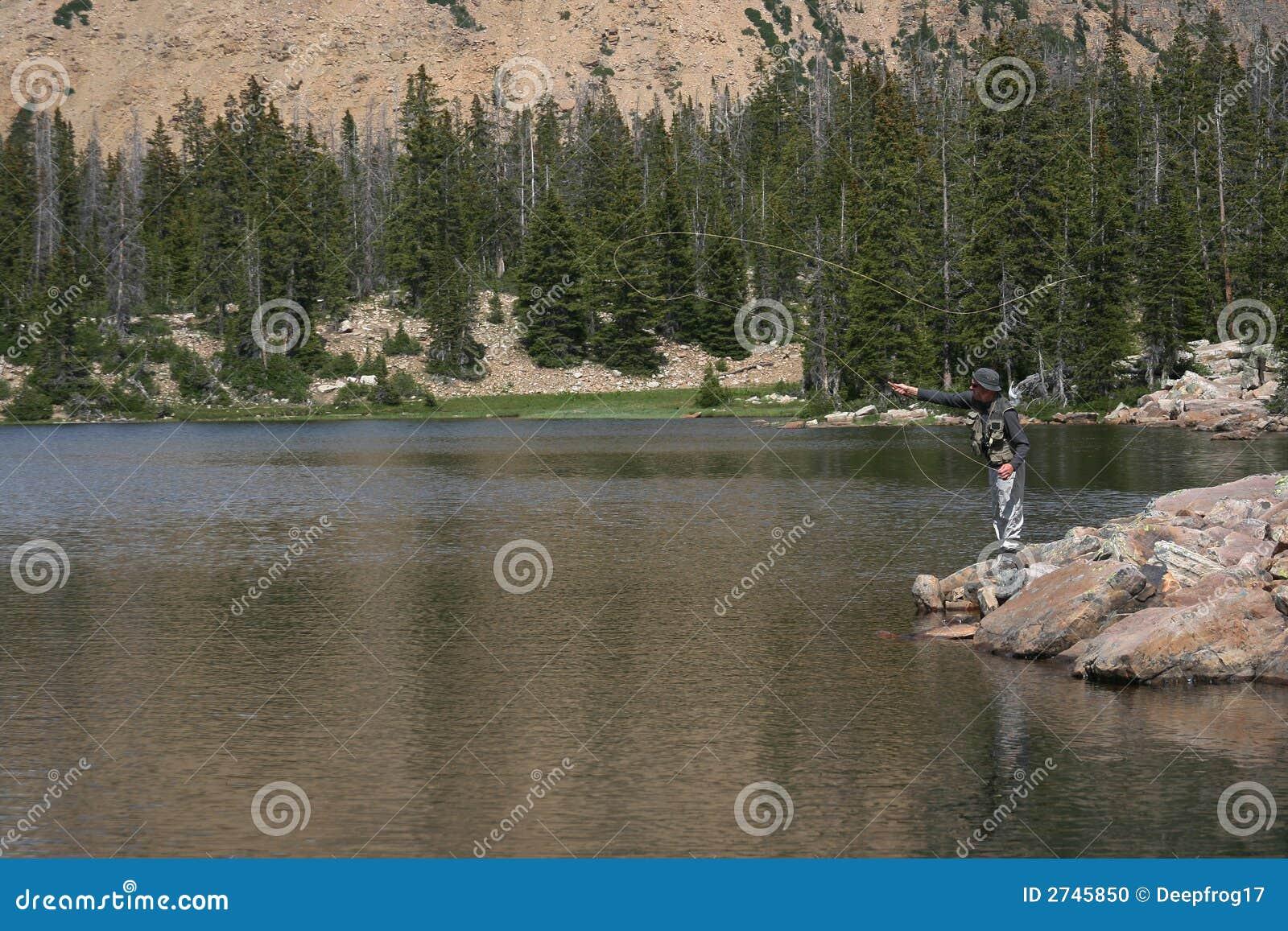 Połowowej rzucony muchy jeziora