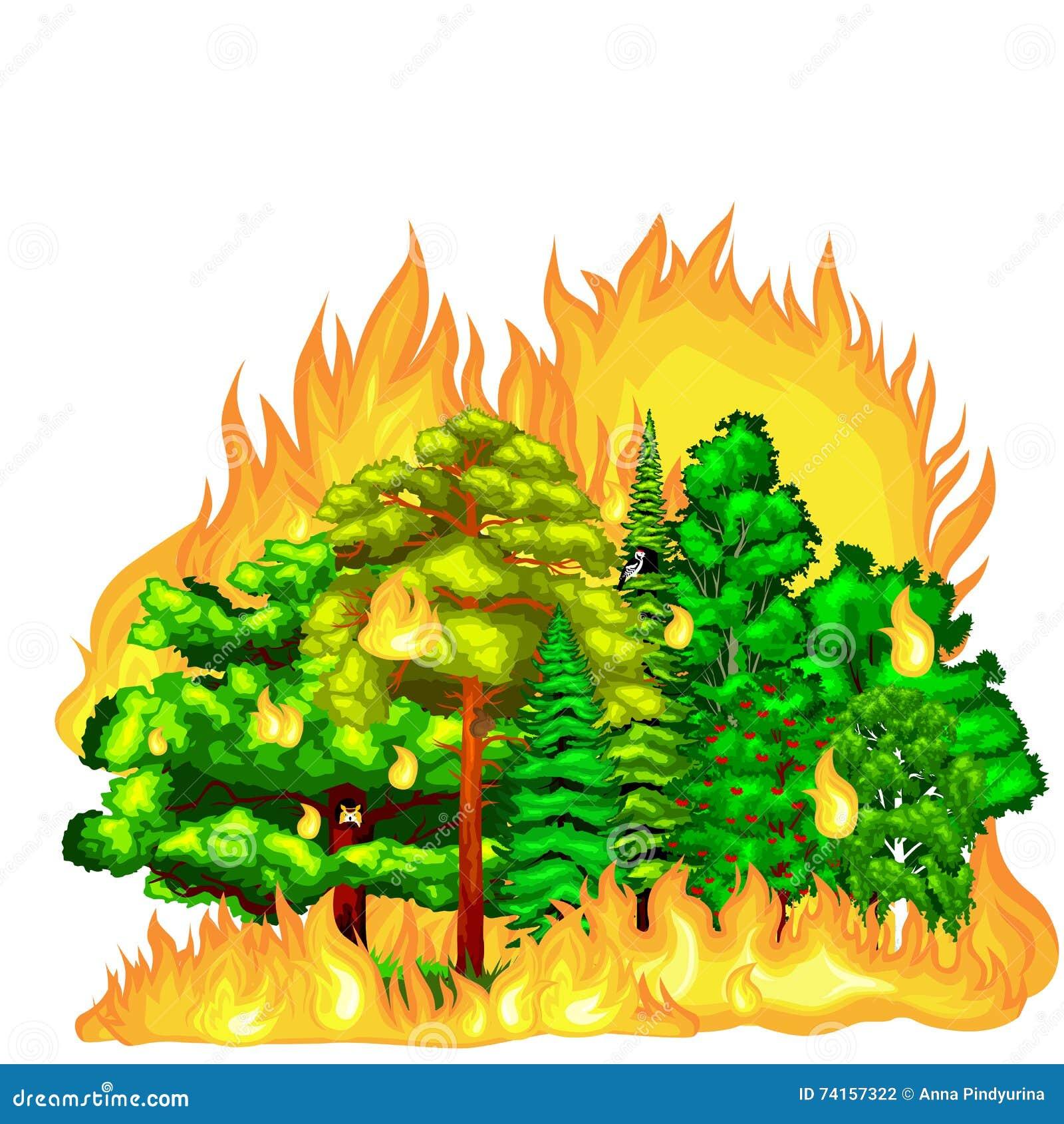 Pożar Lasu, ogień w lasu krajobrazu szkodzie, natury ekologii katastrofa, gorący płonący drzewa, niebezpieczeństwo pożaru lasu pł