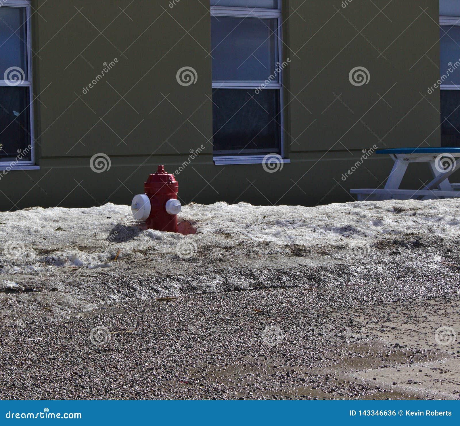 Pożarniczego hydranta śnieg