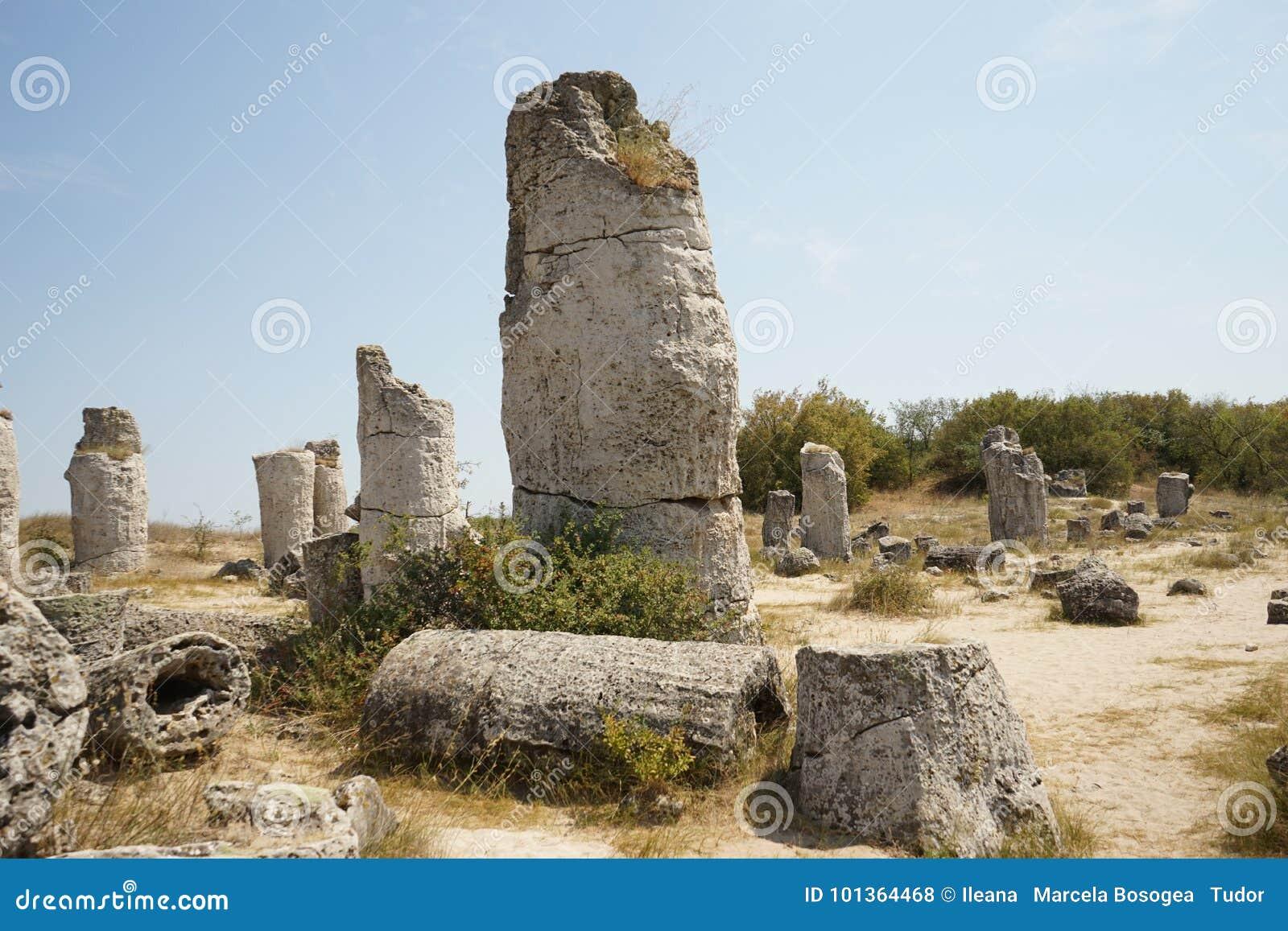 Pobiti Kamani le désert en pierre, un phénomène comme un désert de roche situé dans la Bulgarie