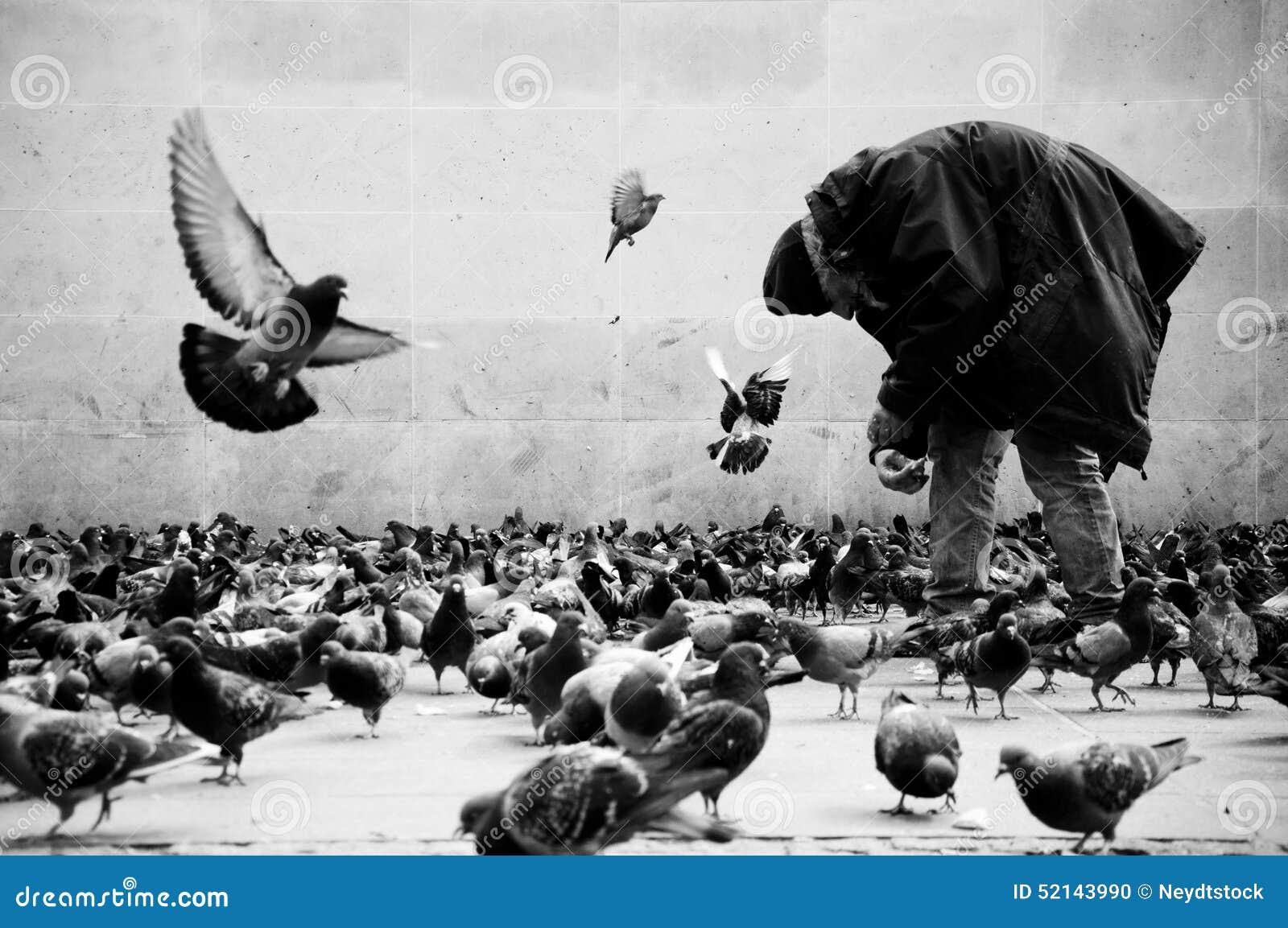 Pobre hombre en las palomas de alimentación de París