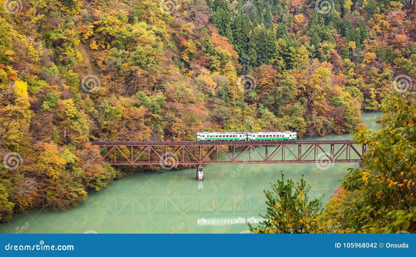 Pociąg na moscie w jesieni