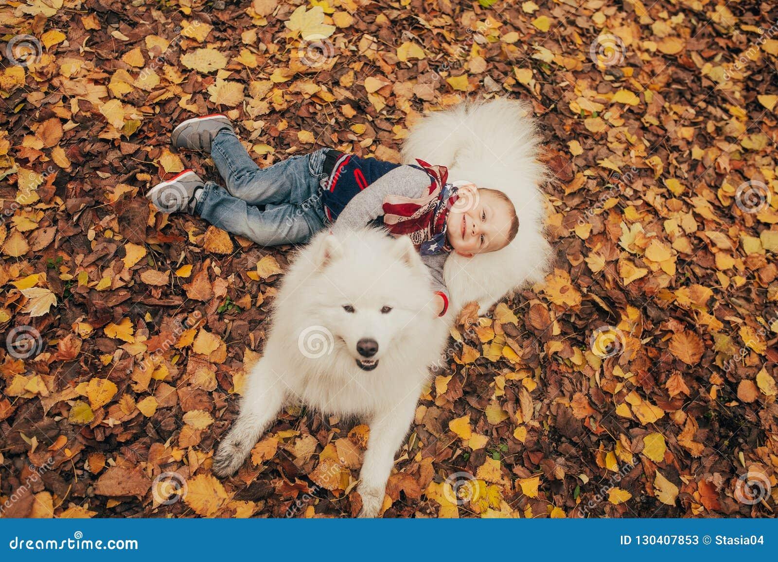 Poco muchacho alegre se sienta al lado de perro y de juegos del samoyedo con él