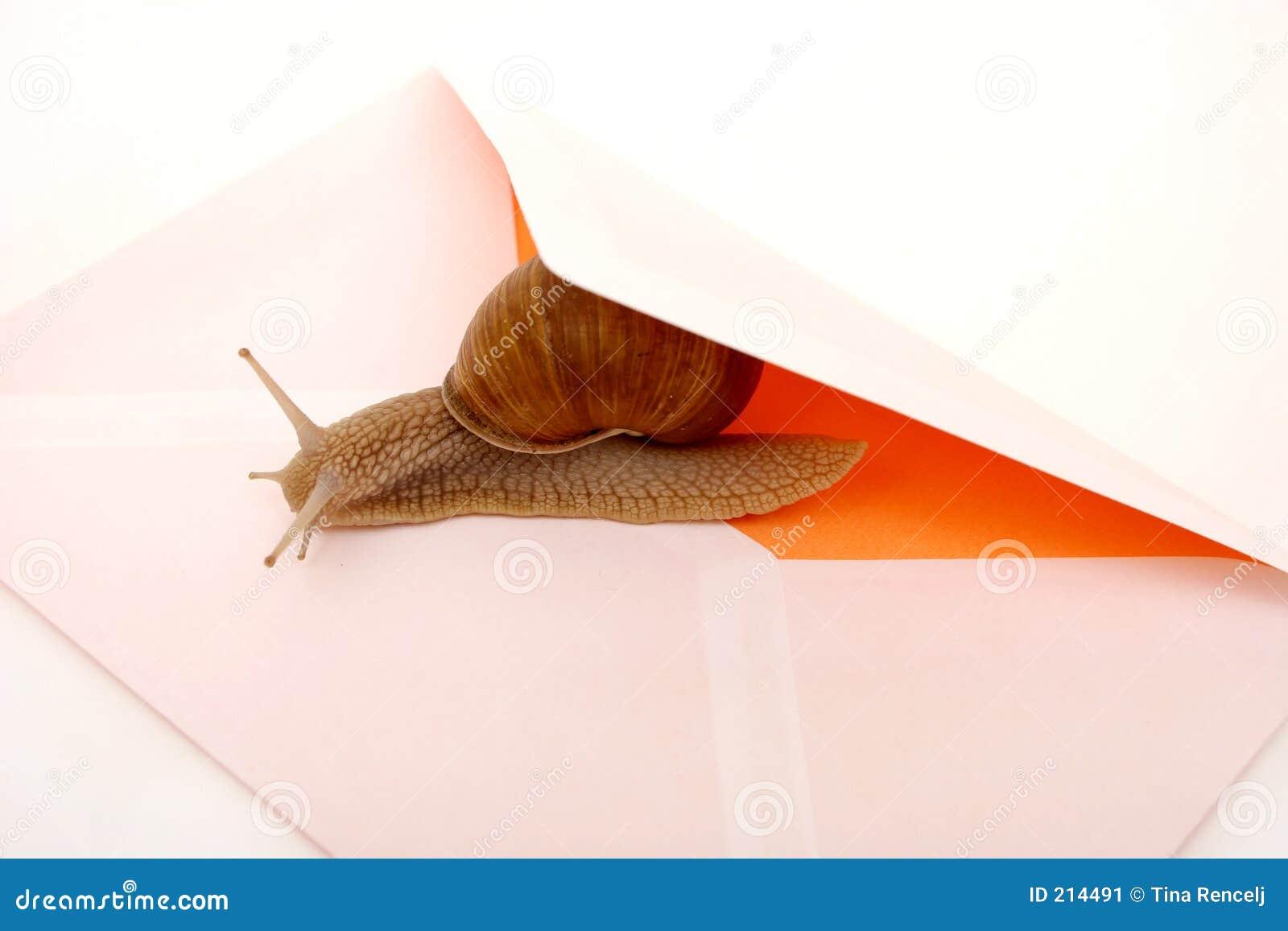 Poczta ślimak