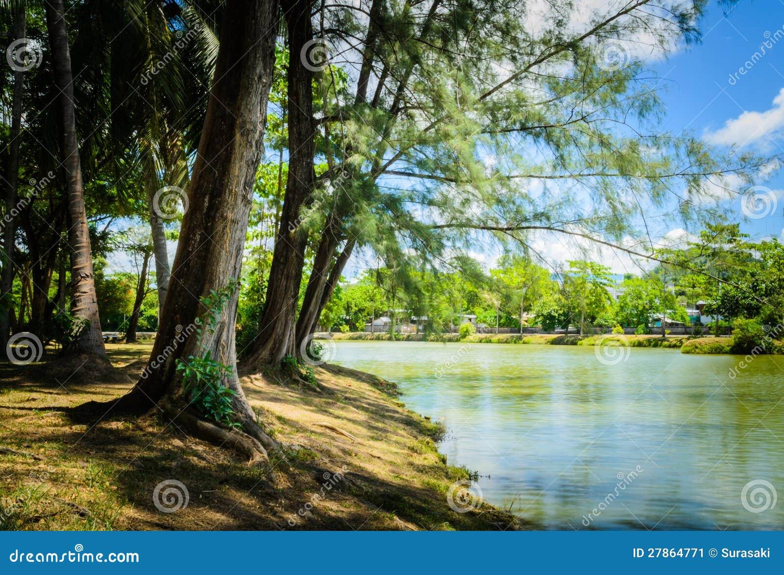 Pod cieniem wzdłuż rzeki