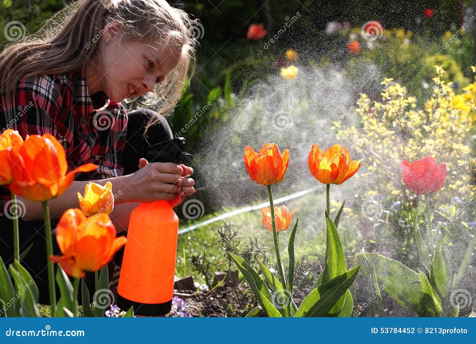 Podlewanie, kwiatu ogród - piękni dziewczyny podlewania tulipany