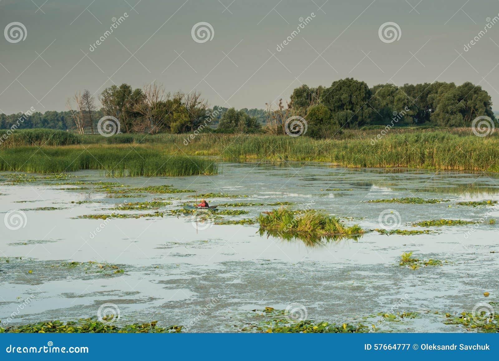 Podpalana widok rzeka