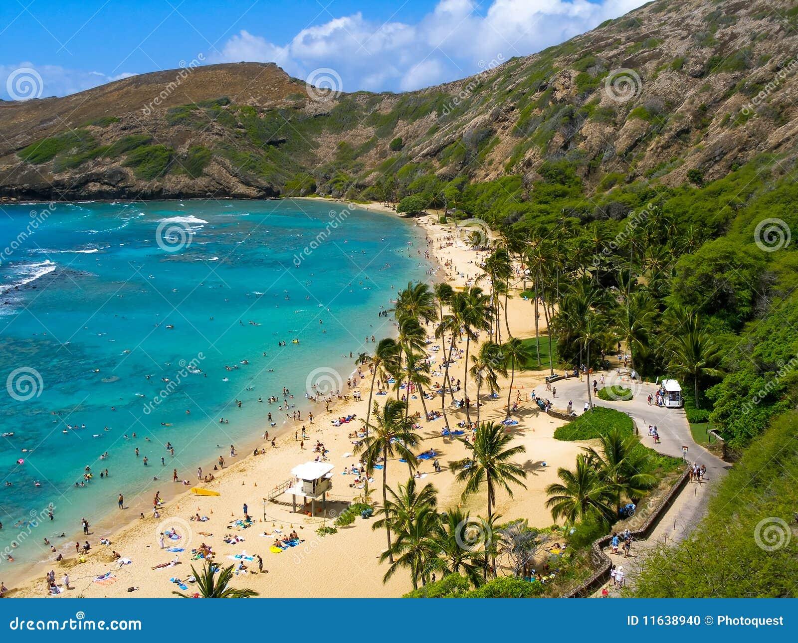 Podpalany hanauma Hawaii