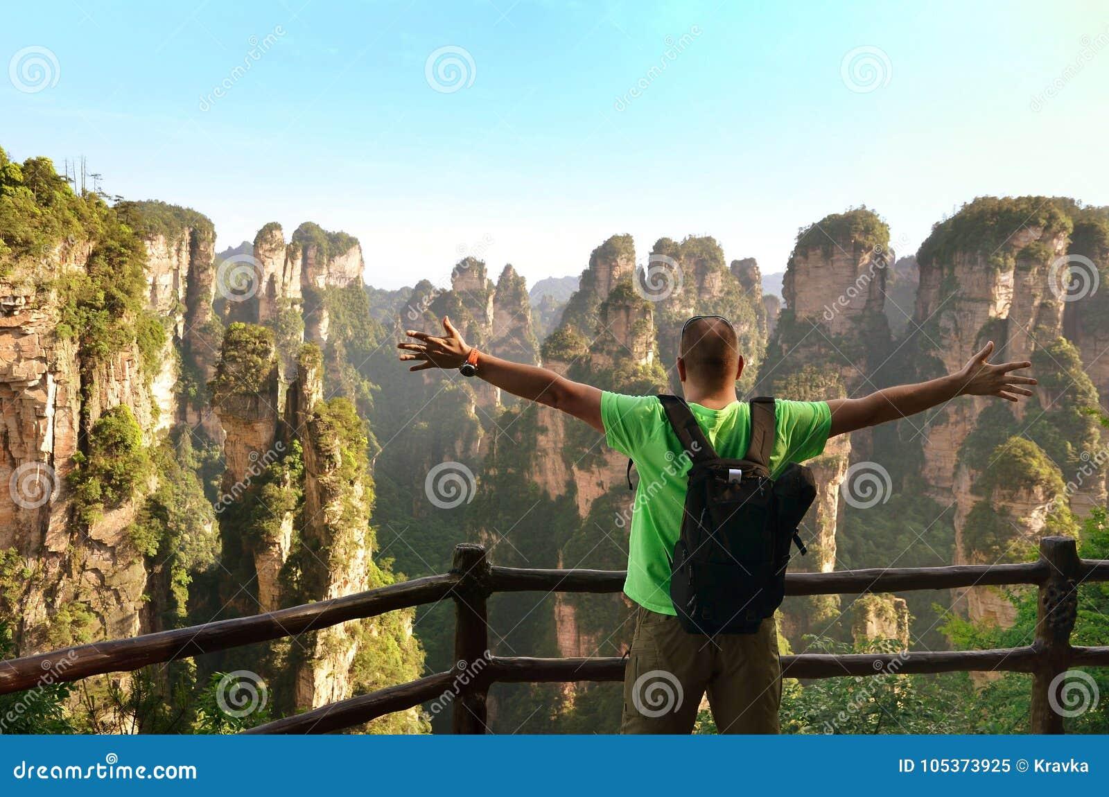 Podróżnik cieszy się zadziwiającego widoku Zhangjiajie parka narodowego