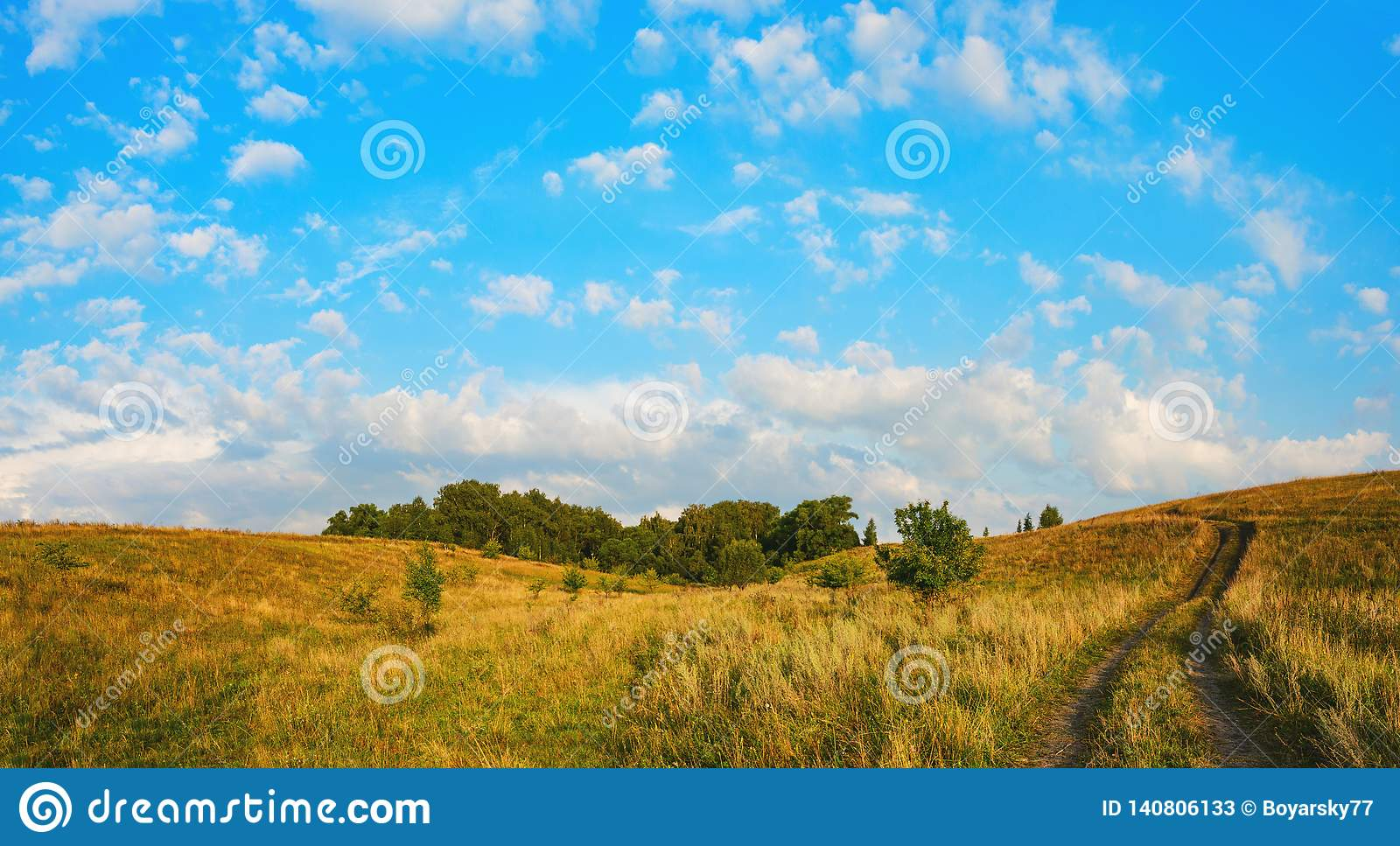 Pogodnego lata panoramiczny krajobraz z zmielonym wiejskiej drogi omijaniem przez drewien i zieleni łąk