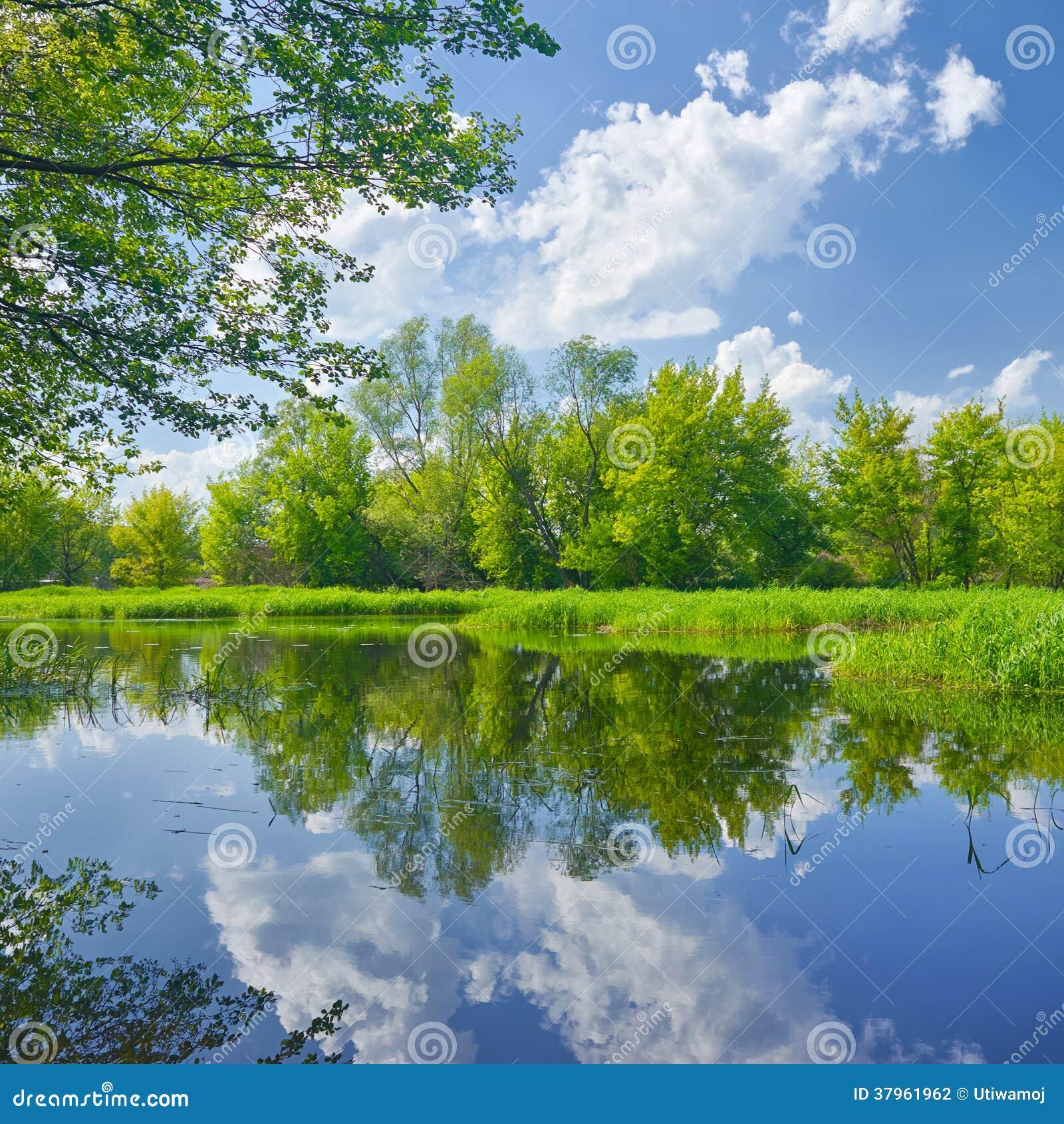 Pogodny wiosna krajobraz Narew rzeką.