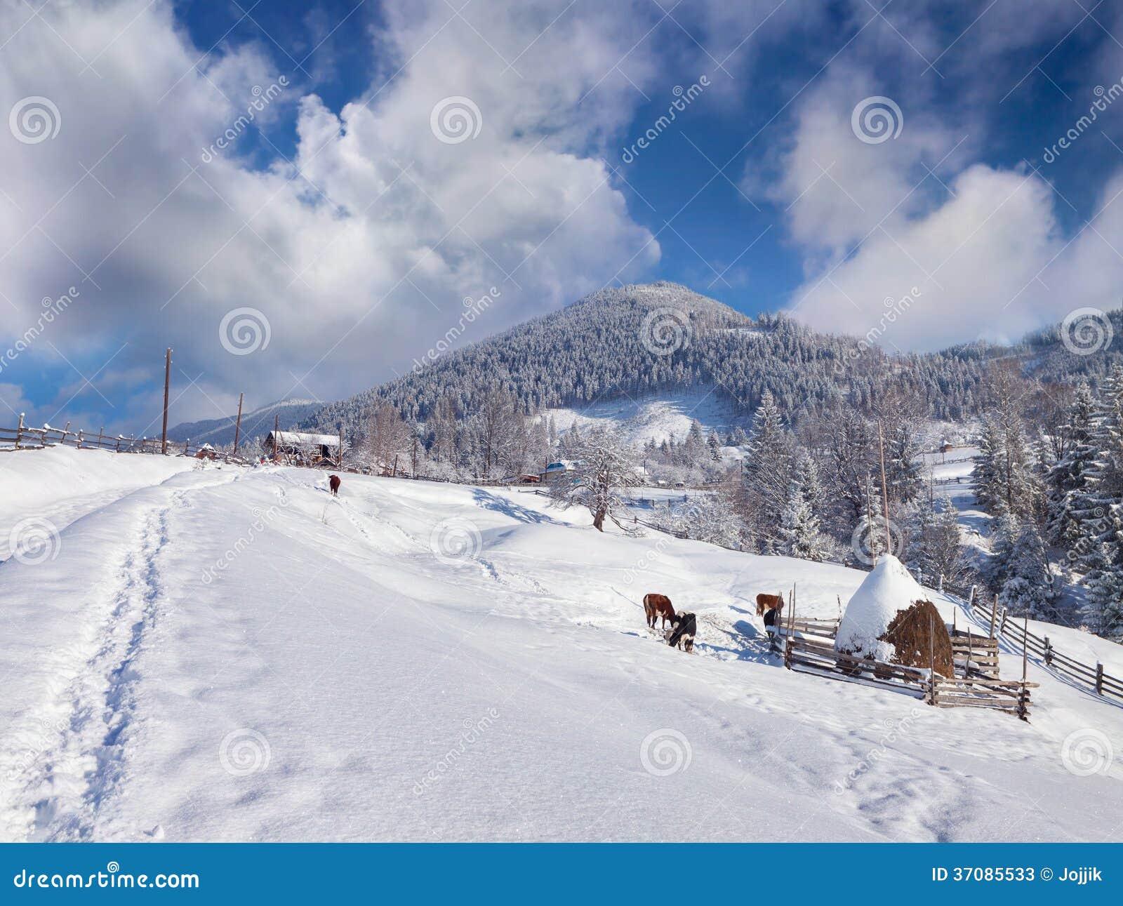 Download Pogodny Zima Krajobraz W Górskiej Wiosce Obraz Stock - Obraz złożonej z majestatyczny, świeży: 37085533