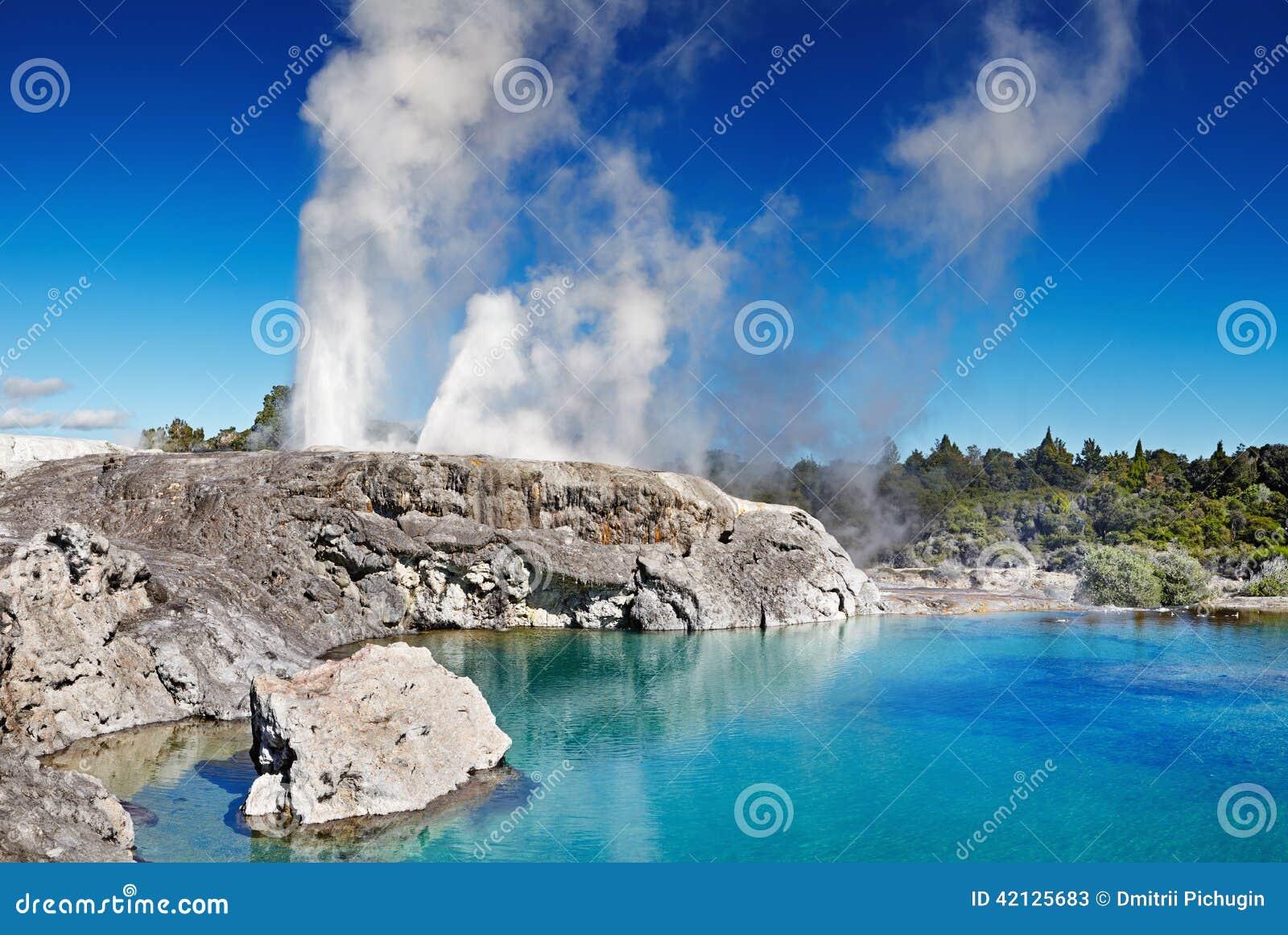 Pohutu neuf la zélande de geyser