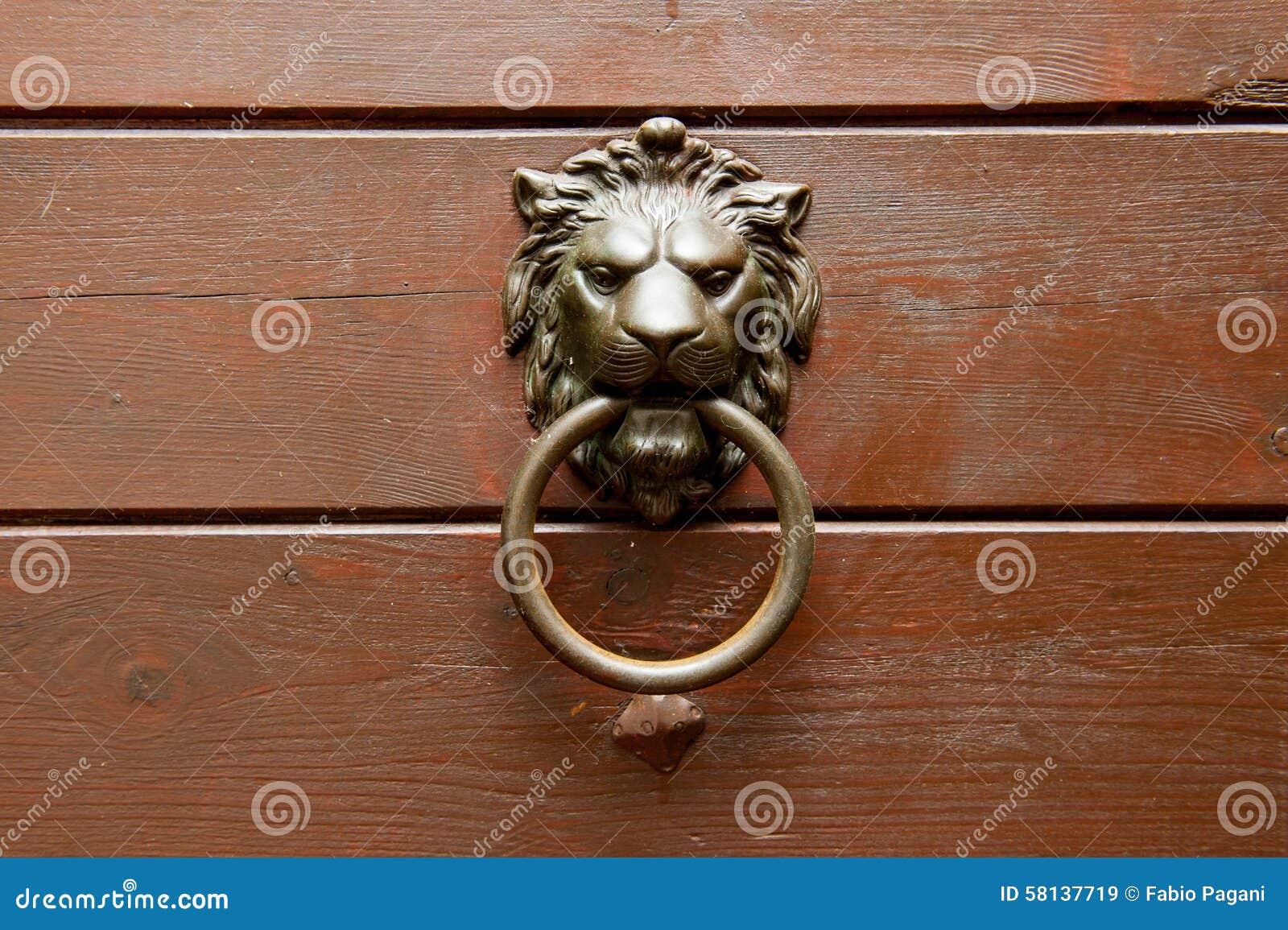 Poignée En Bronze De Tête De Lion Sur La Porte En Bois