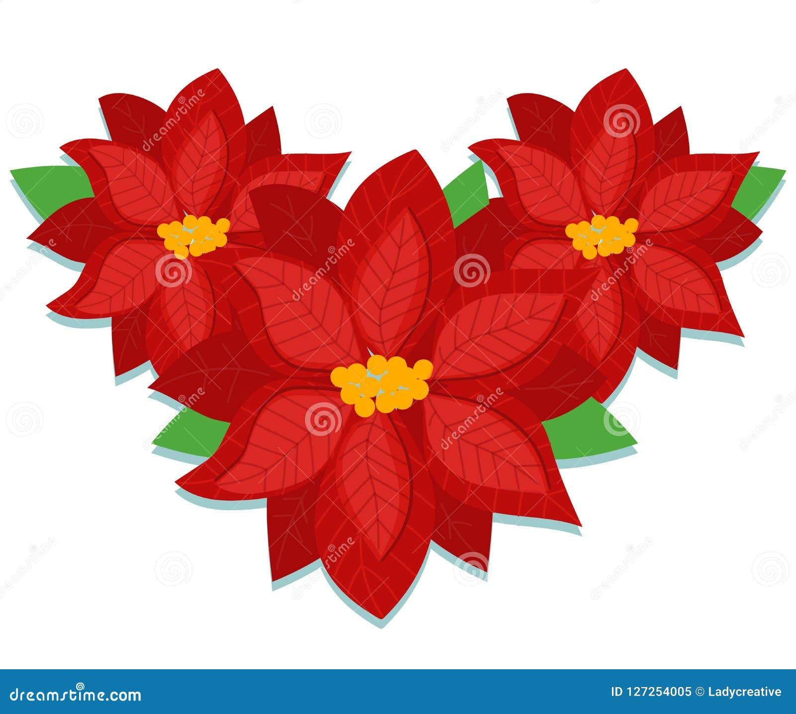Poinsettia Christmas Flower Vector Stock Vector Illustration Of Christmas Decoration 127254005