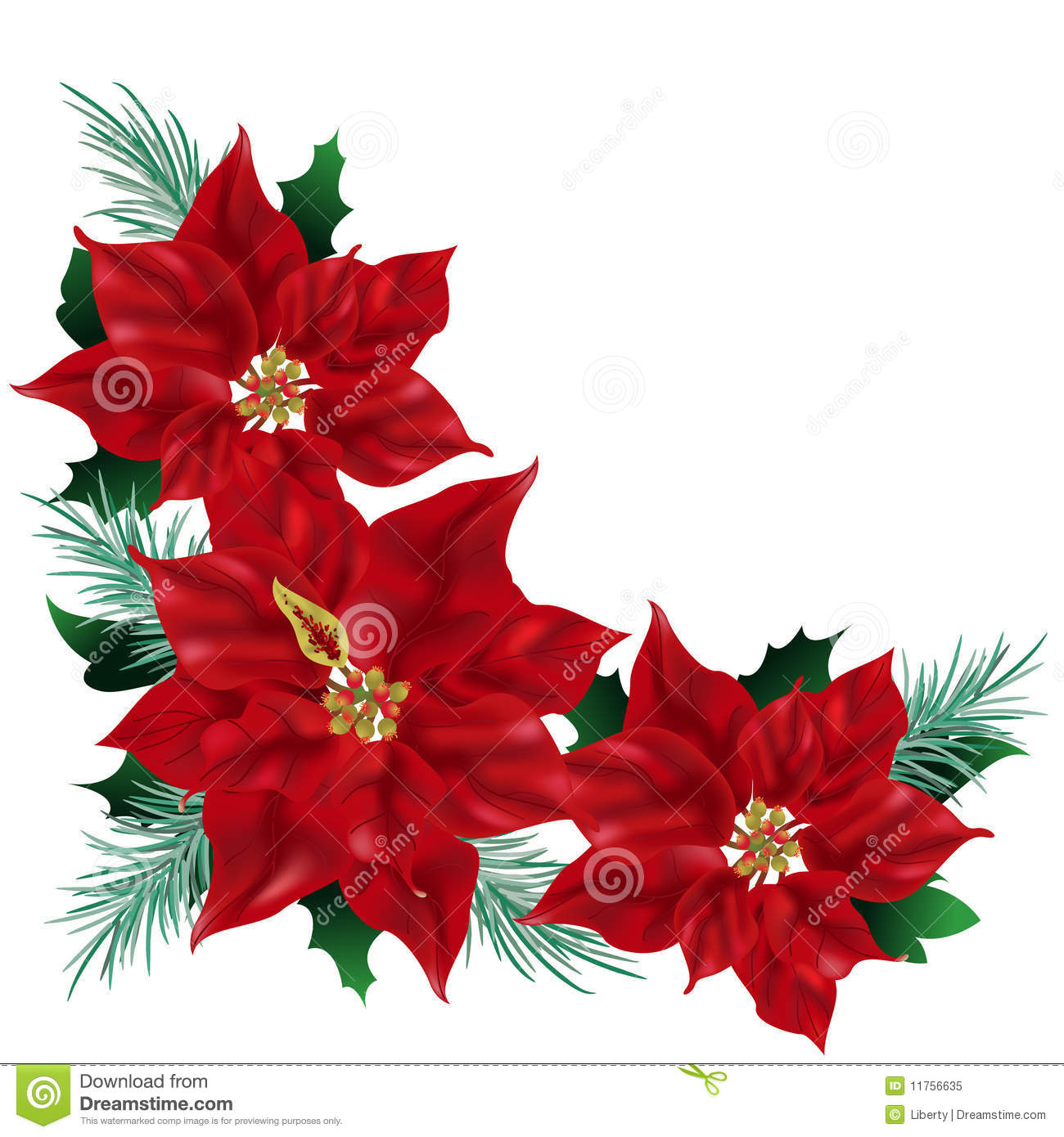 Christmas Poinsettia Clip Art Stock Photos, Images, & Pictures ...