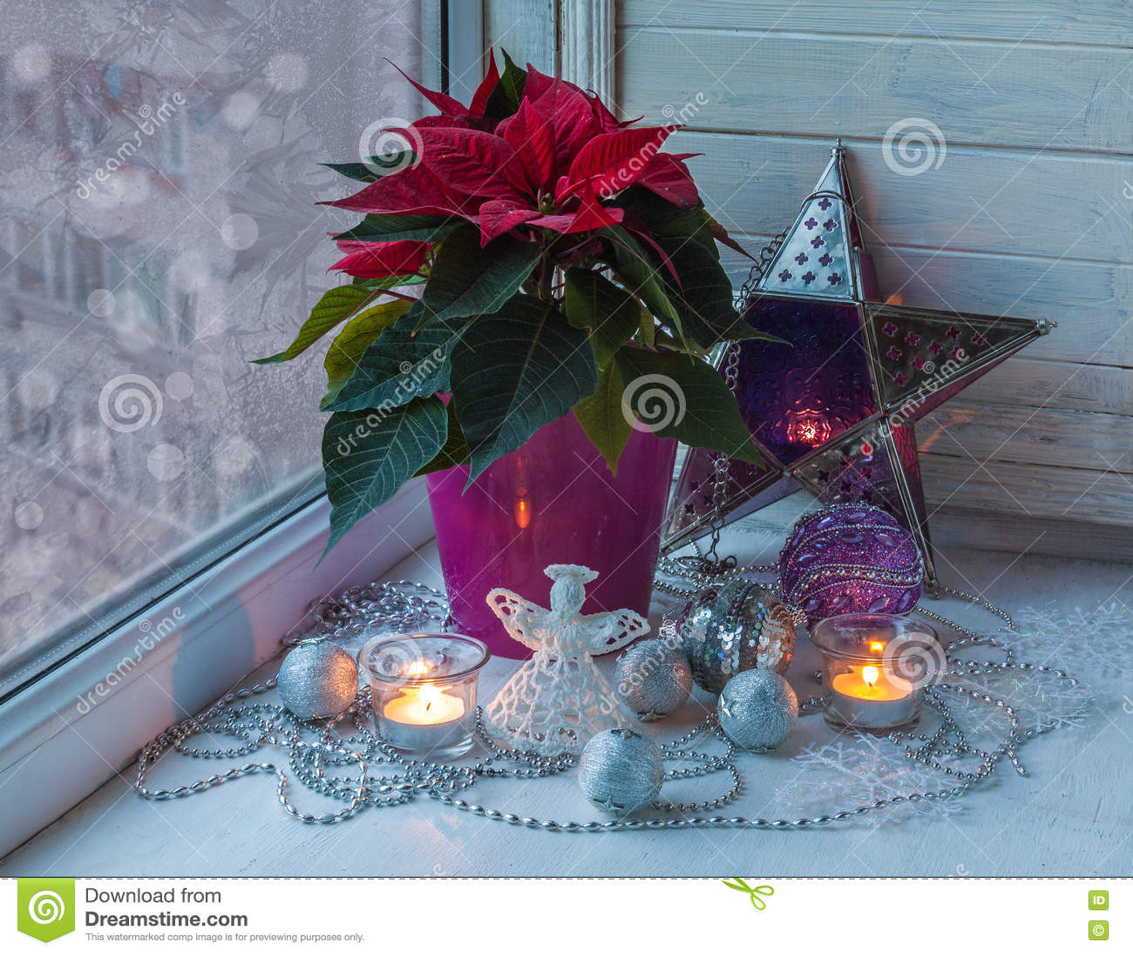 Poinsettia dans la fenêtre à la veille du producti de Christmasmass