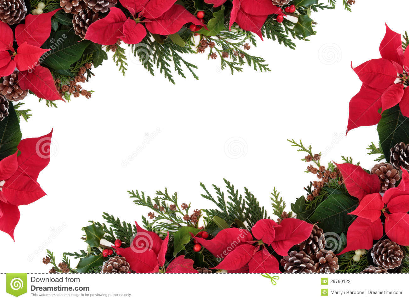 Poinsettia Floral Border Stock Photography Image 26760122