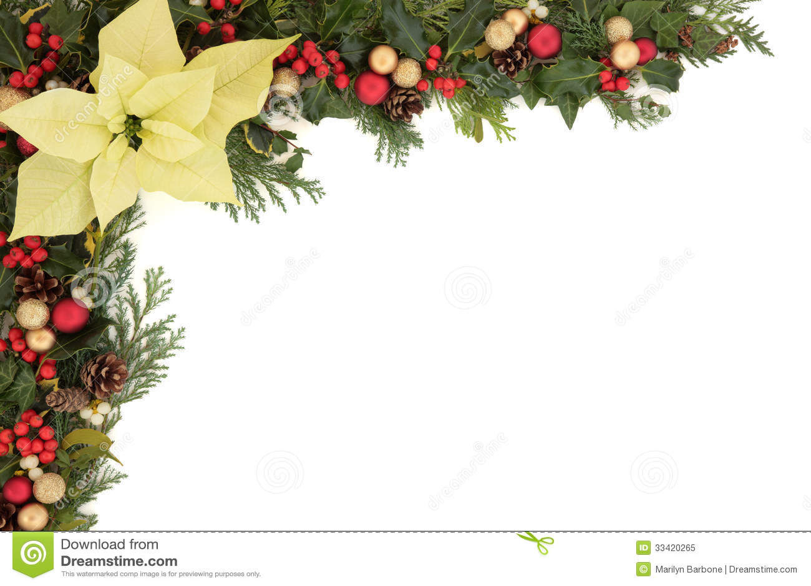Christmas floral border stock photos freeimages com - Poinsettia Flower Border Royalty Free Stock Photo