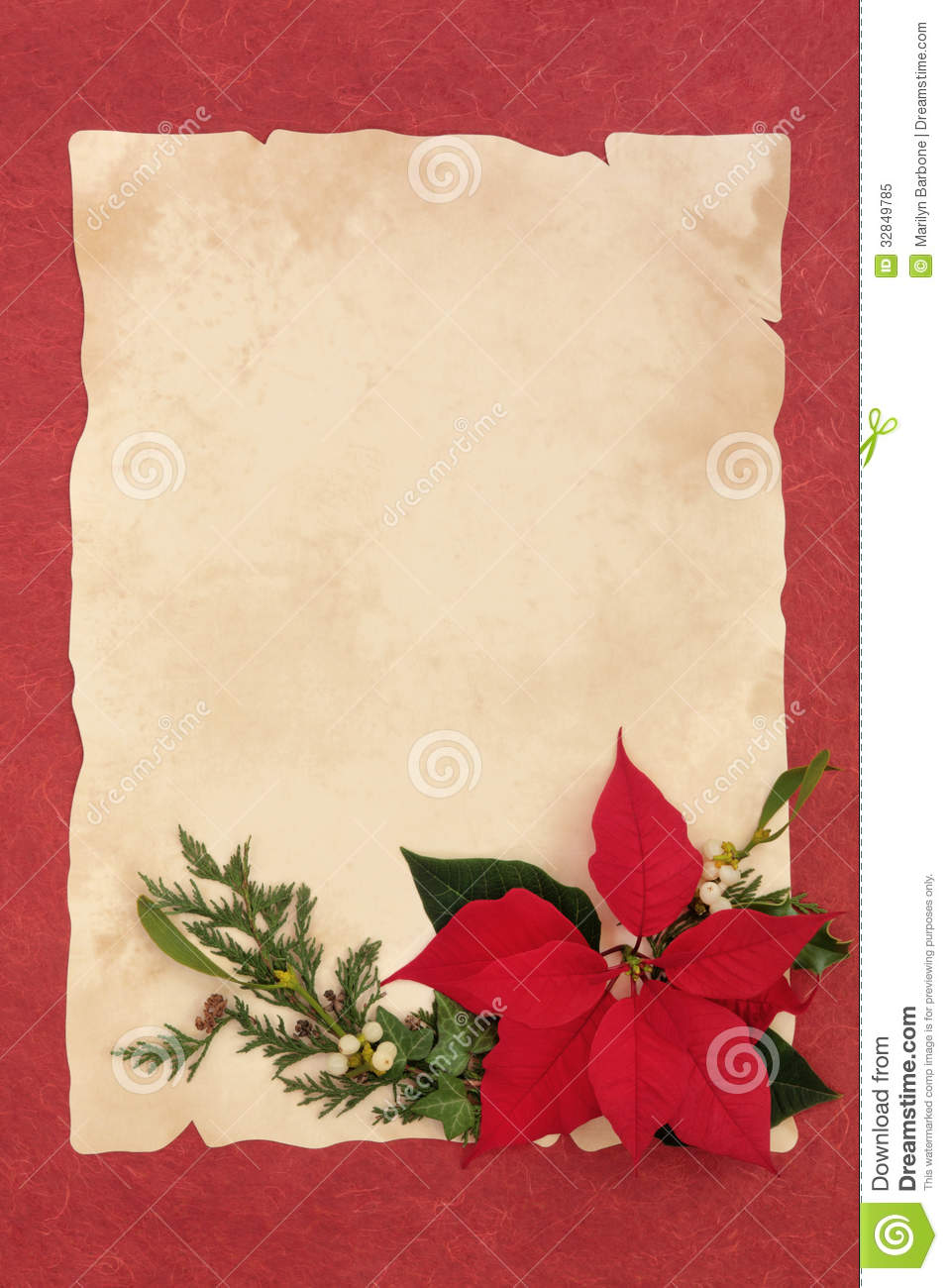 Poinsettia flower, mistletoe, ivy and pine leaf border over parchment ...