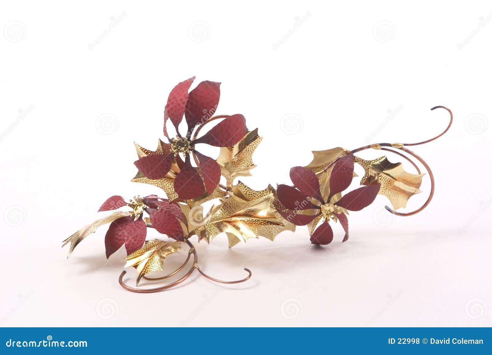 Poinsettias de la hoja