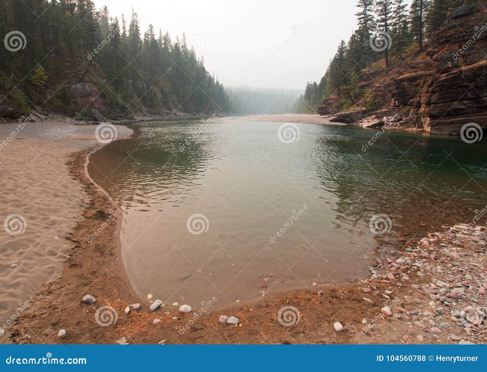 Point de rencontre à tête plate et repéré de rivières d ours dans le secteur de région sauvage de Bob Marshall pendant les 2017 f