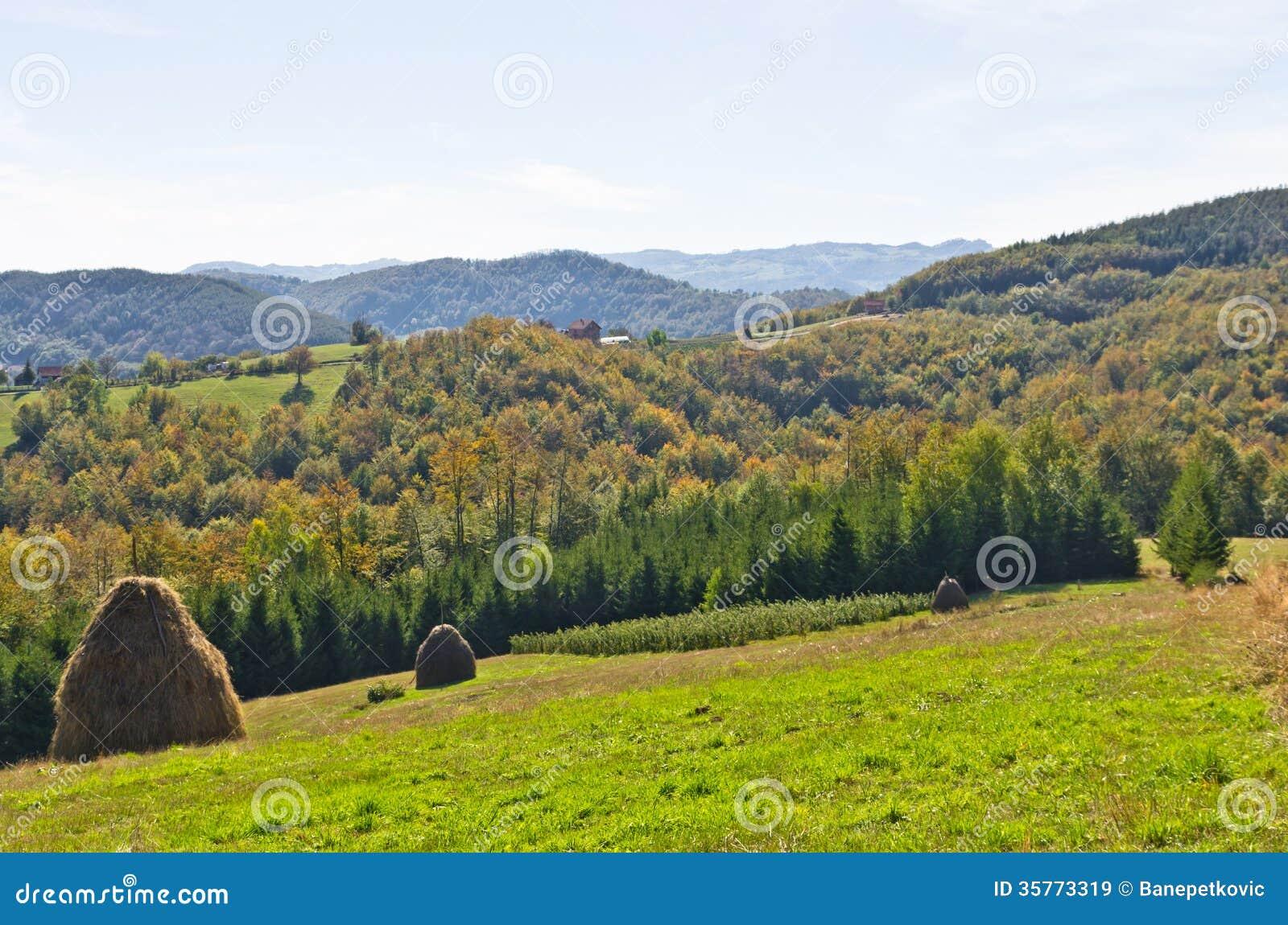 point de vue sur un paysage de b ti bobija de collines de meules de foin de pr s et d 39 arbres. Black Bedroom Furniture Sets. Home Design Ideas