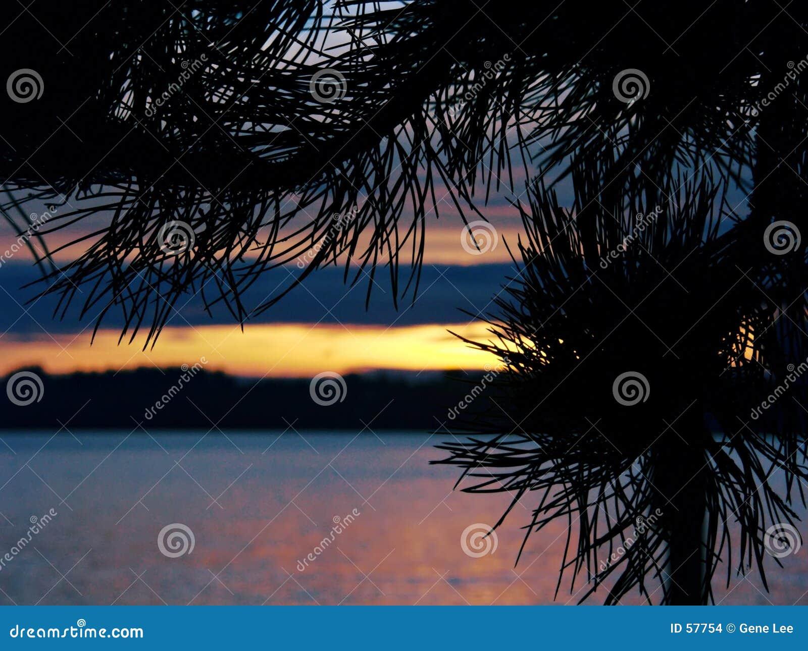 Download Pointeaux silhouettés photo stock. Image du marin, coloré - 57754