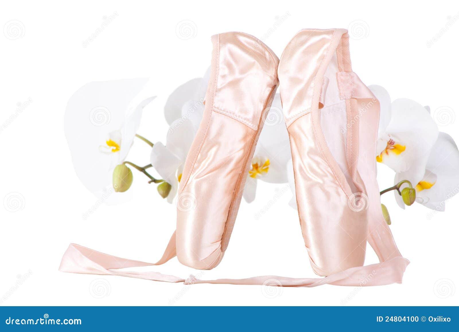 Pointes del ballet con las orquídeas en blanco aislado