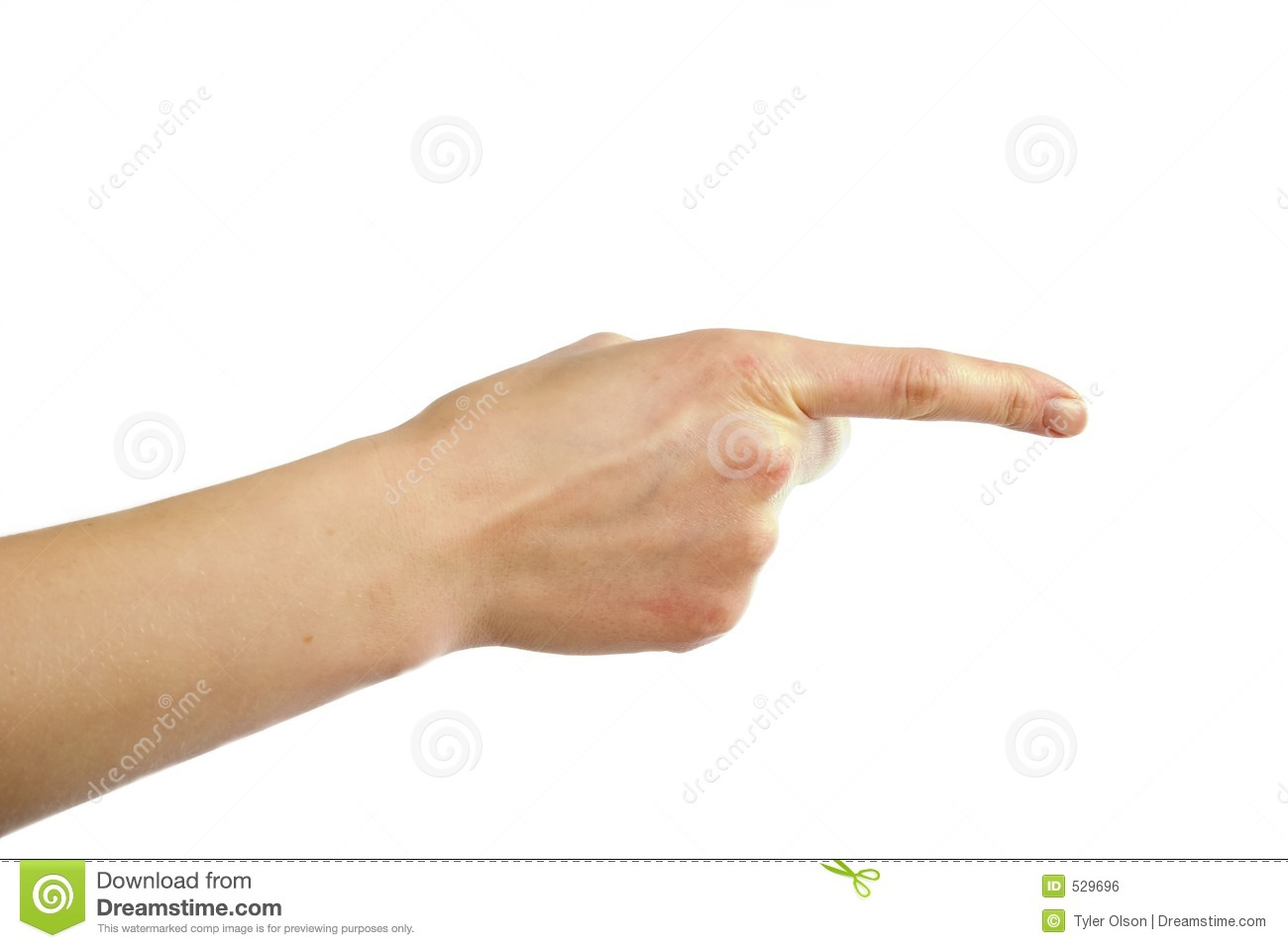 An adult female hand pointing. Image includes clipping path.