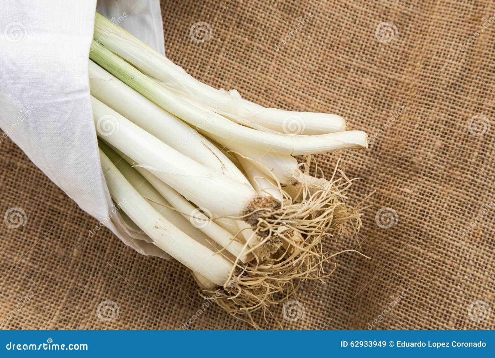 Poireaux avec la serviette blanche