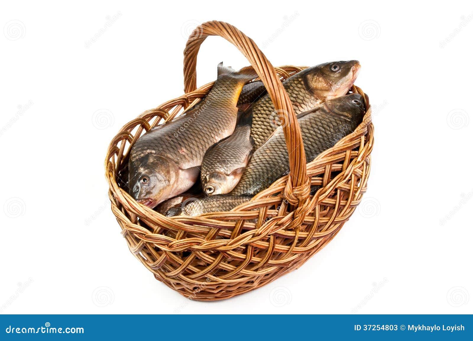 poisson frais dans un panier image stock image 37254803. Black Bedroom Furniture Sets. Home Design Ideas