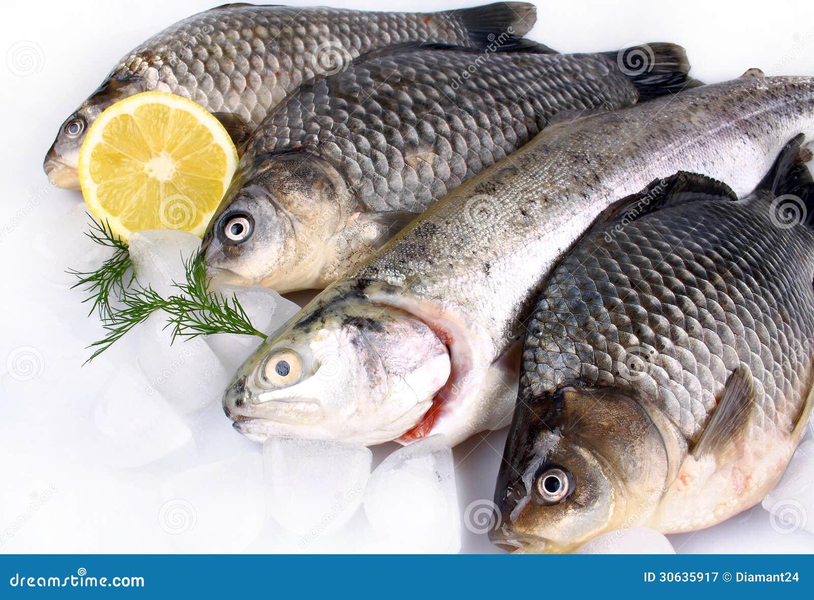 poisson frais sur le fond blanc avec de la glace et le citron image stock image 30635917. Black Bedroom Furniture Sets. Home Design Ideas